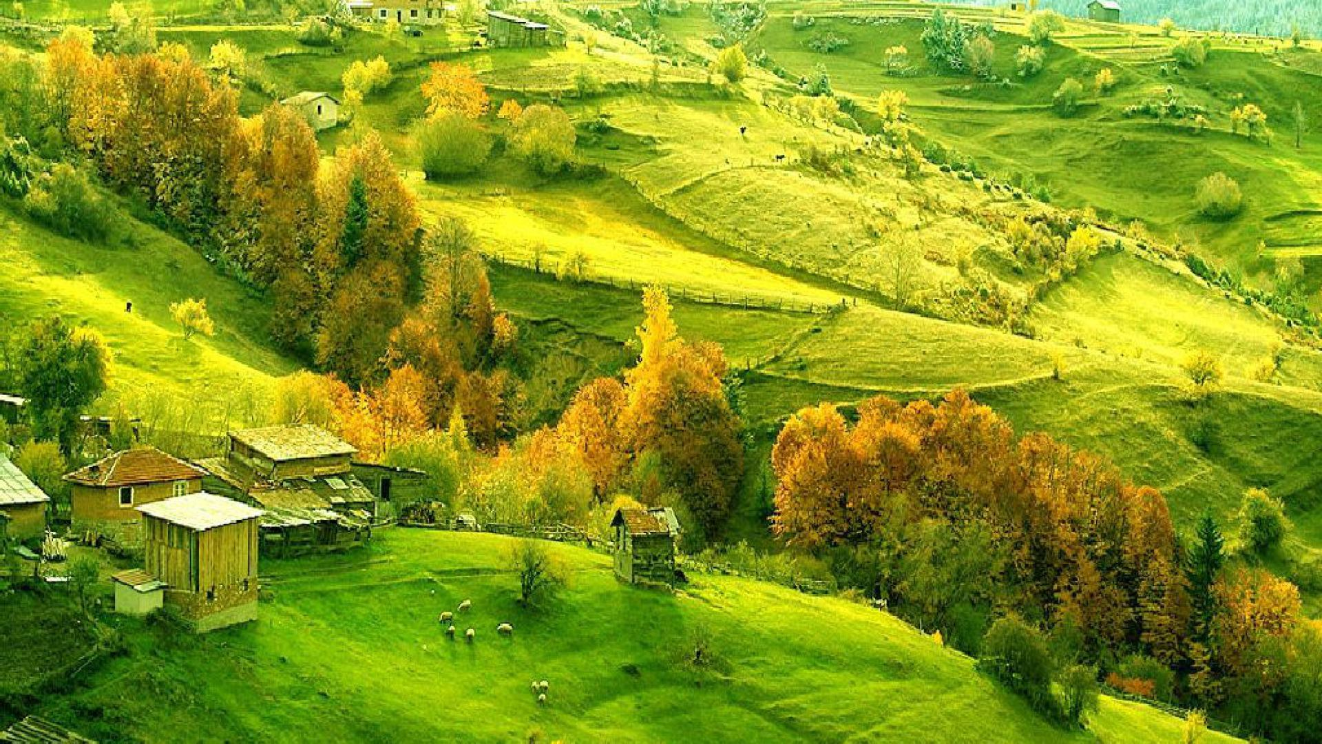 1920x1080px Tuscan Countryside Wallpapers Desktop