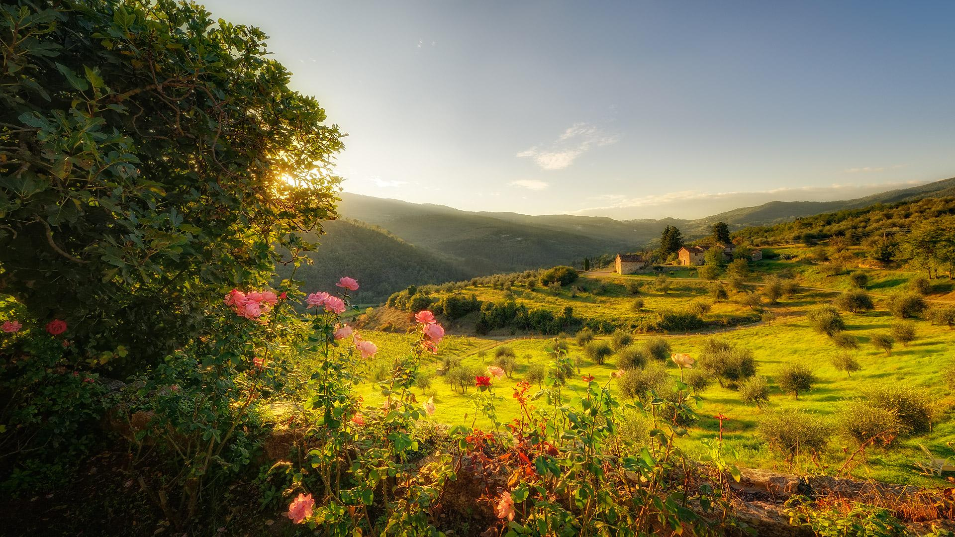 Free Tuscany Wallpaper #6901166