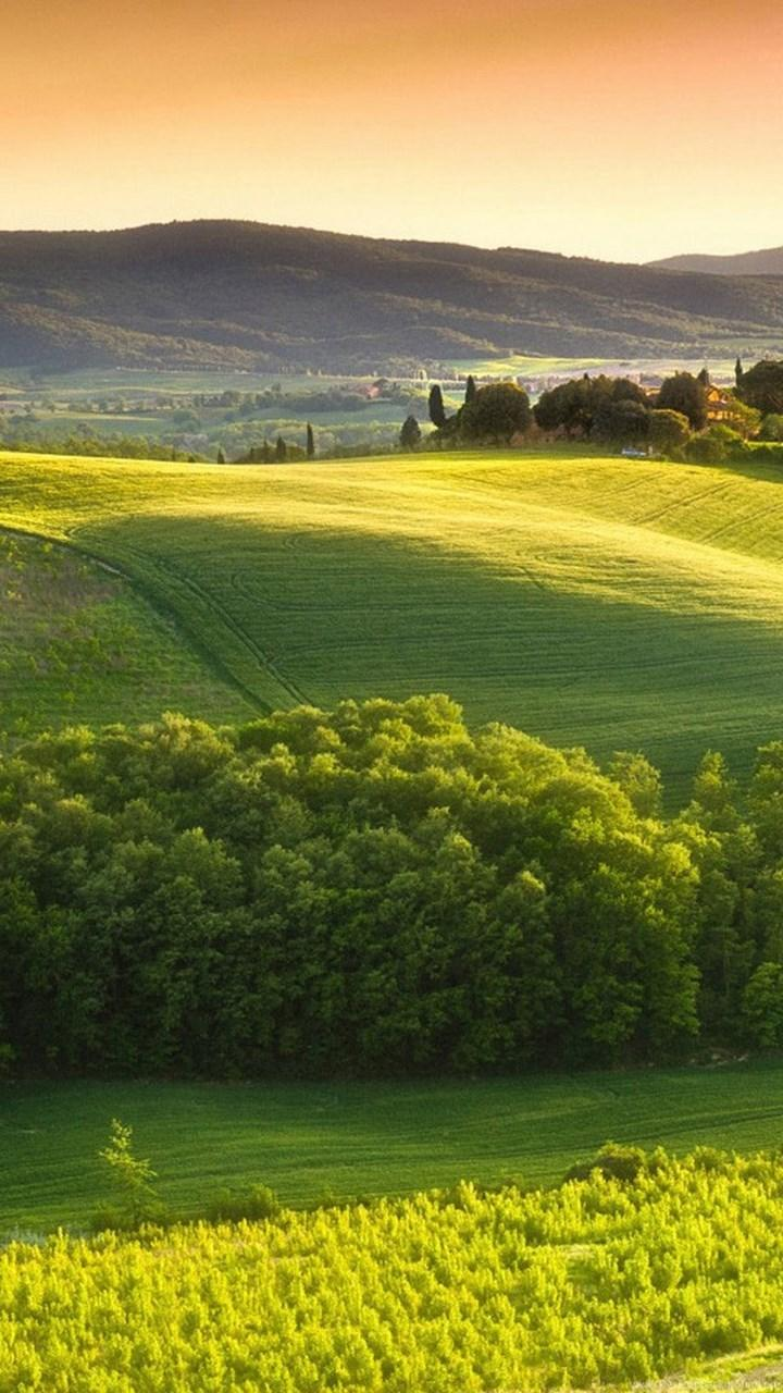 Tuscan Countryside Wallpaper