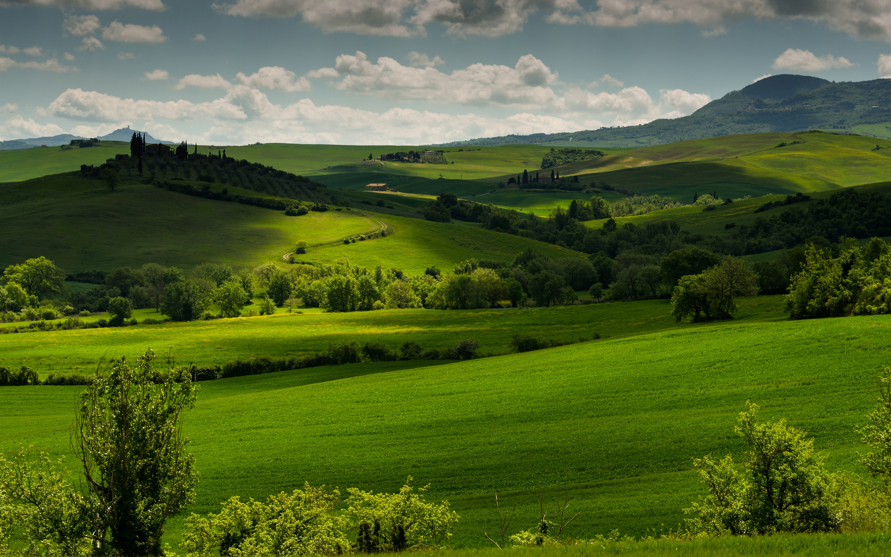 Pienza, Tuscany, Italy, spring scenery, fields, trees, morning, fog ...