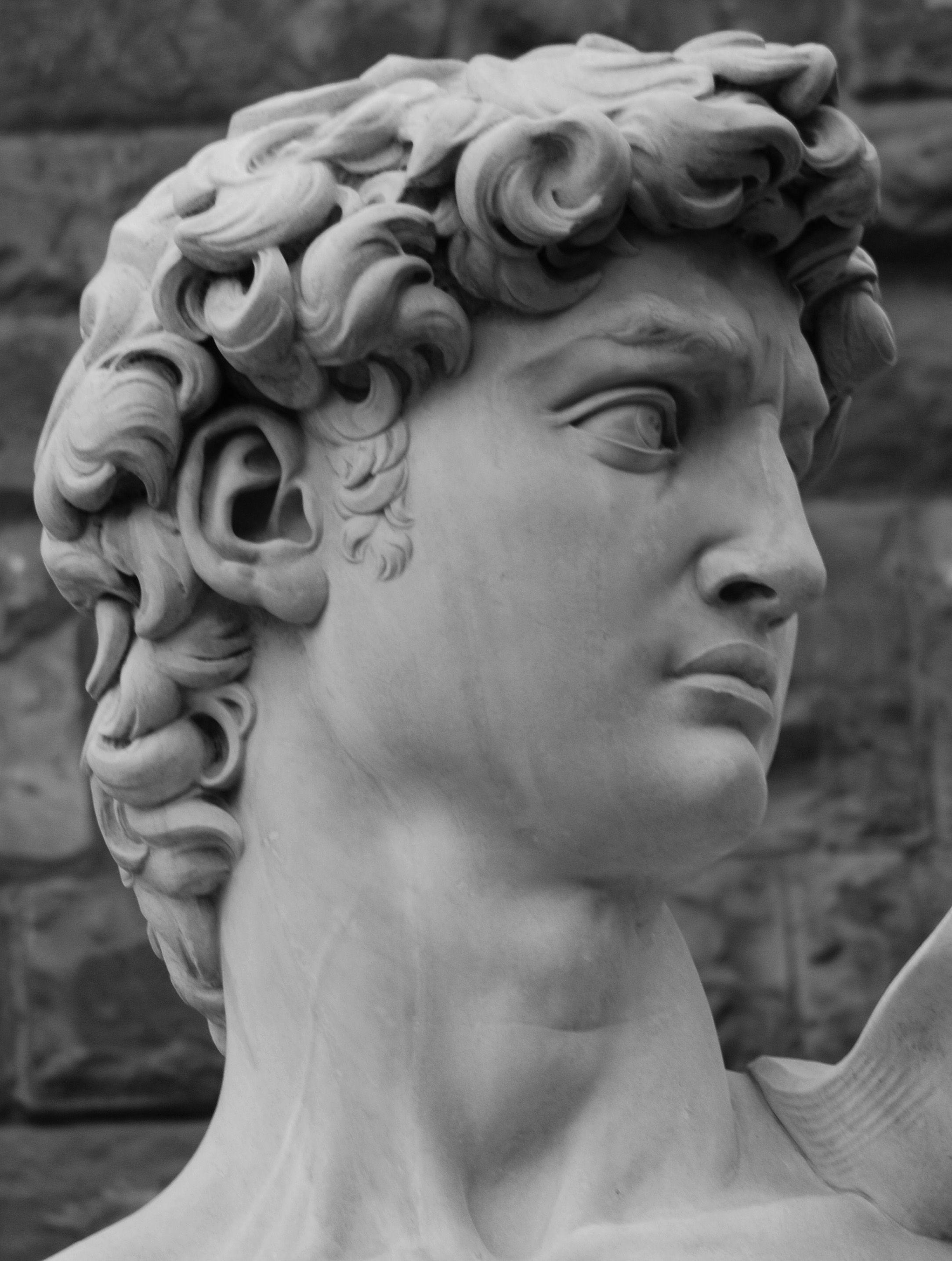 michelangelo david face