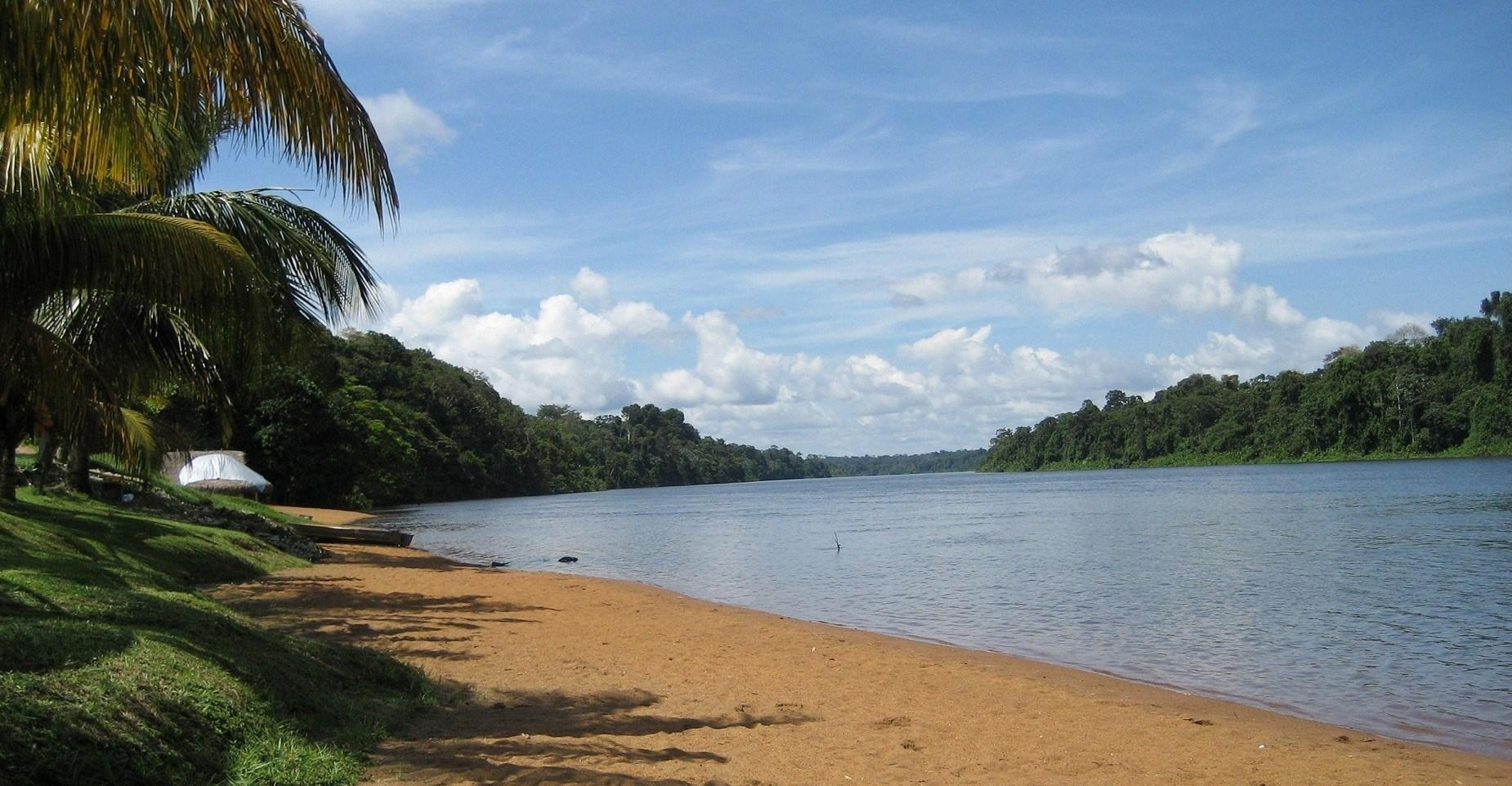 River and Tropical Coas in Suriname Wallpapers