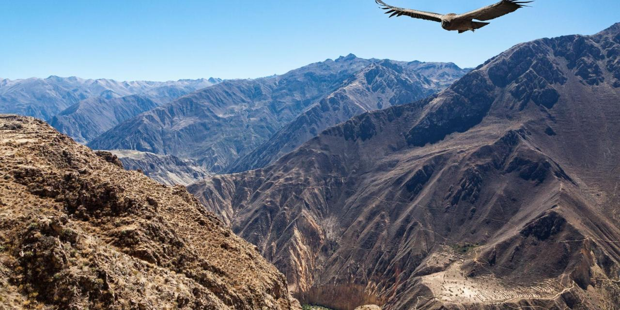The Colca Canyon – World's Largest Canyon – World for Travel