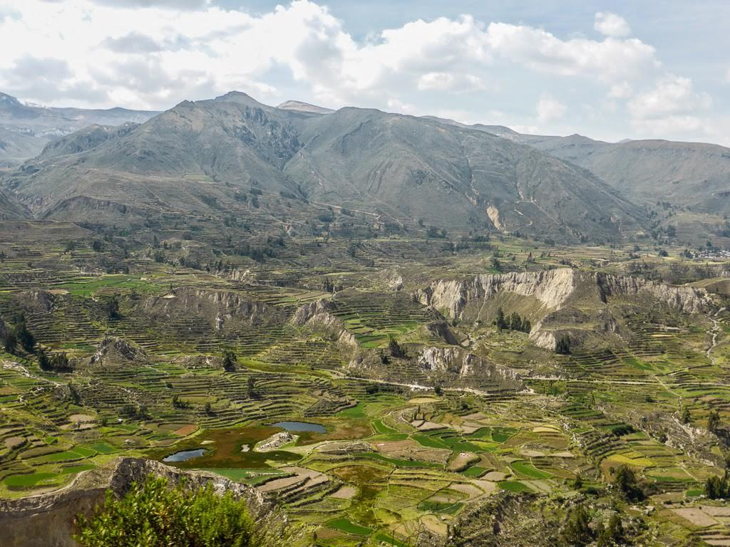 Trekking The Colca Canyon, Peru – TrekSnappy