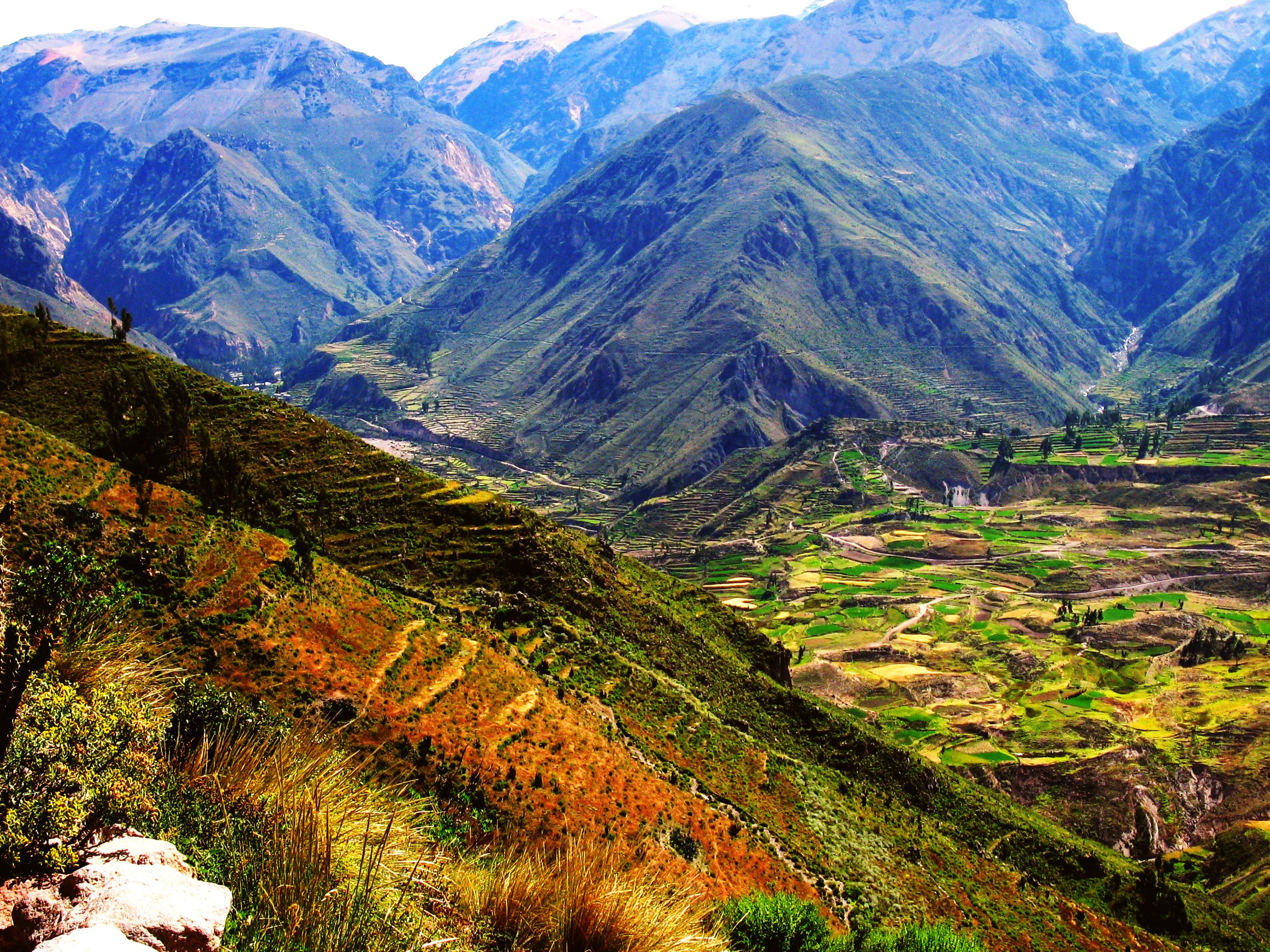 Colca Canyon Full Day :: Peru Breathtaking Trips :: Peru Tours and