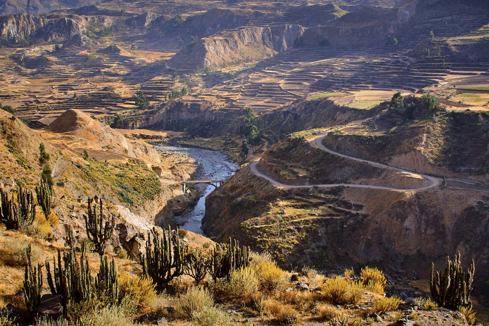 The Ultimate Trekking Guide to the Colca Canyon, Peru
