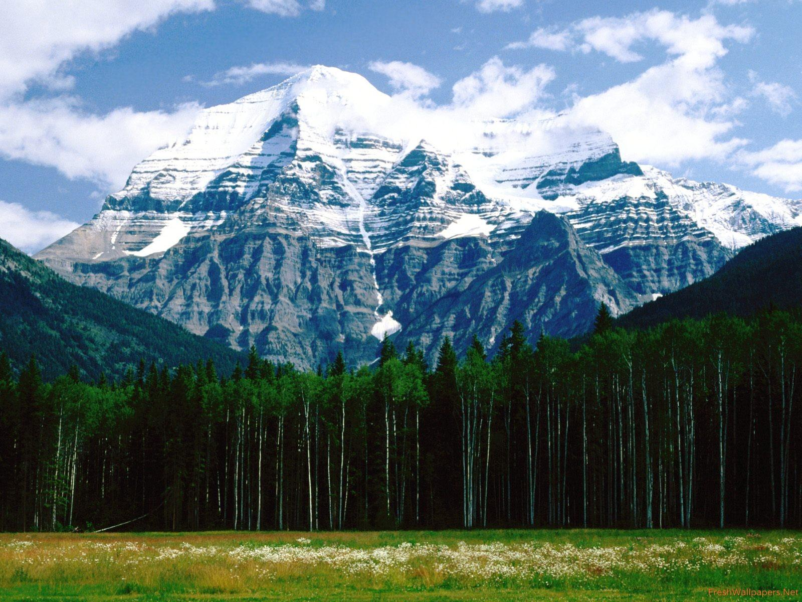 Mt. Robson, Canadian Rockies wallpapers