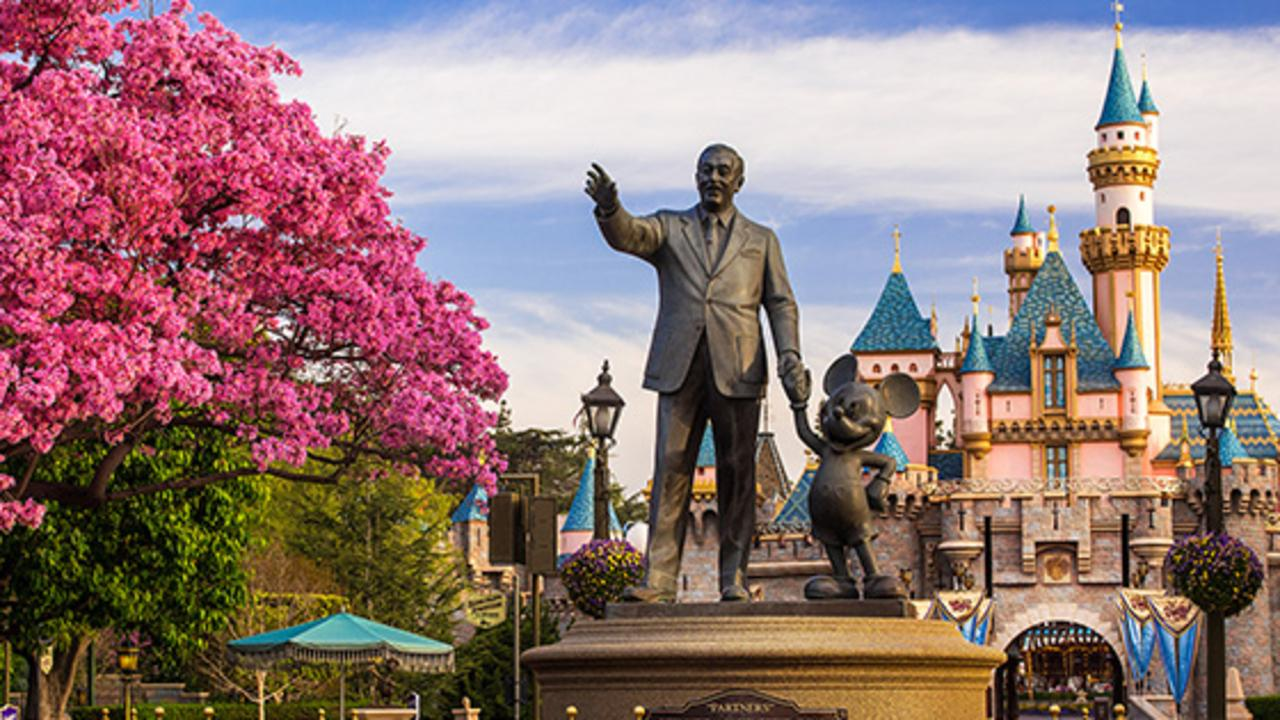 Disneyland Park wallpapers