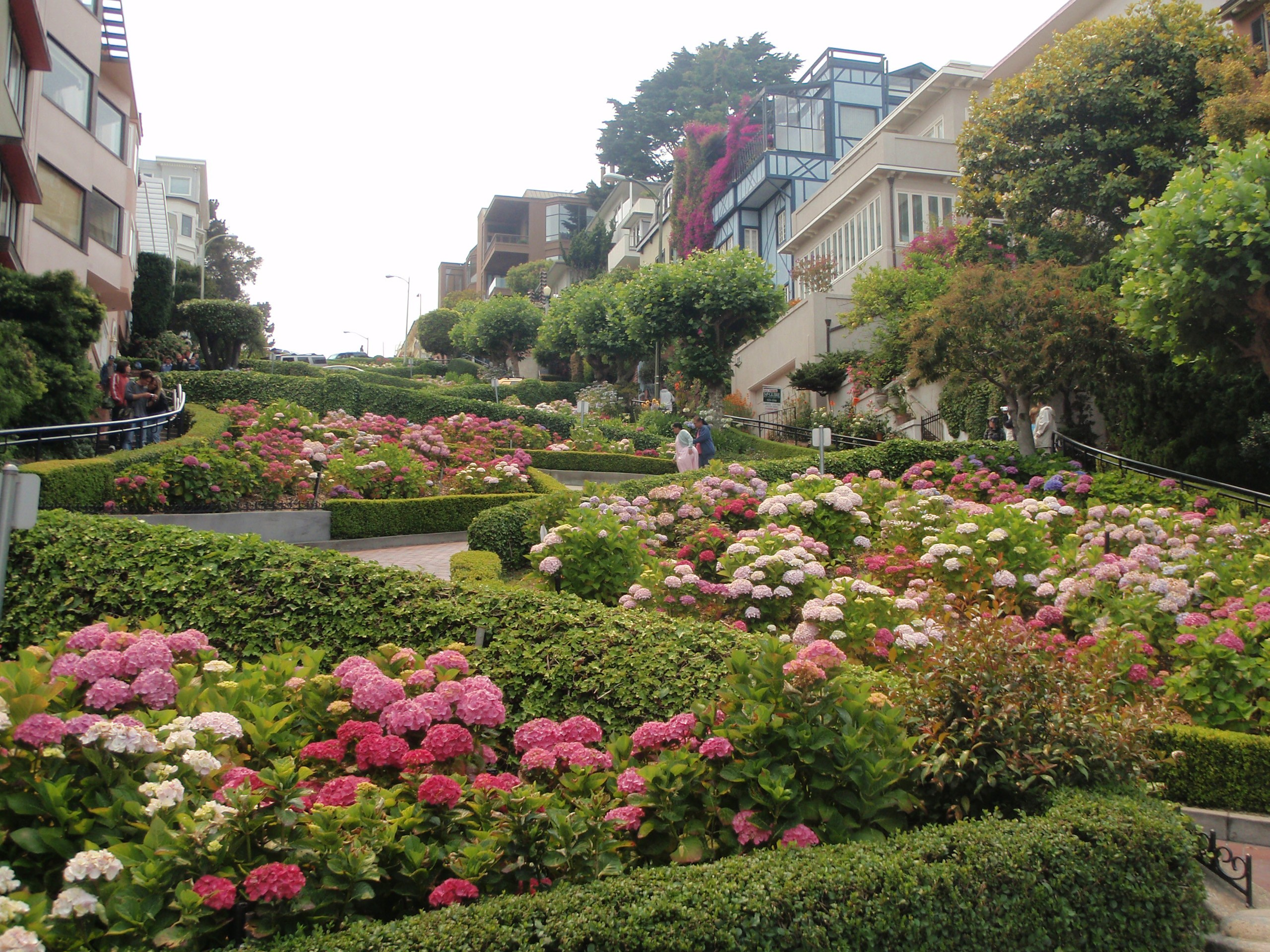 Streets architecture garden buildings San Francisco wallpapers