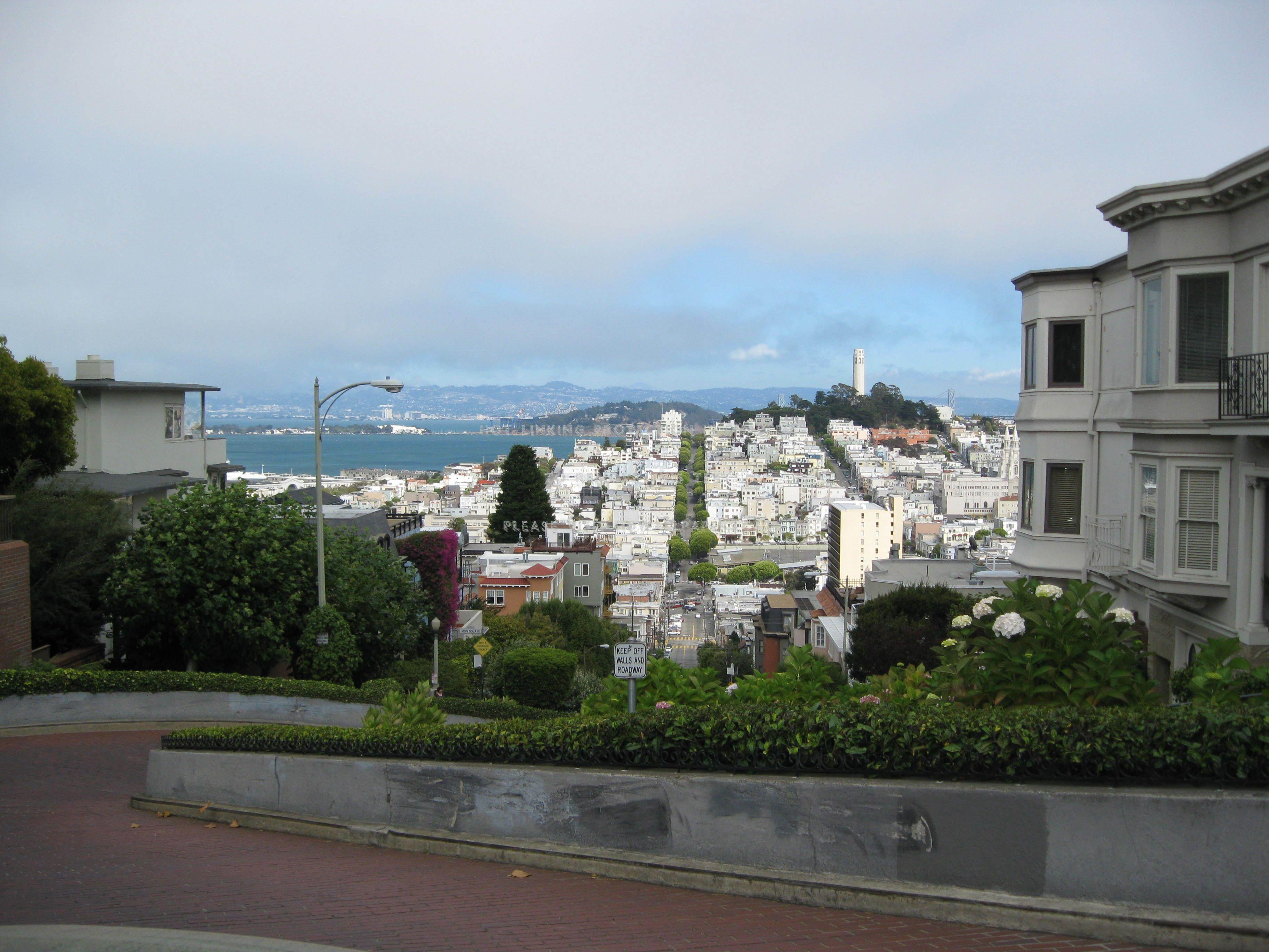 a view from lombard street road california