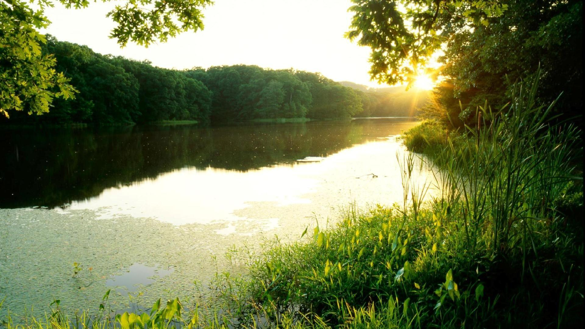 Jones, catalog, screen, wallpaper, indiana, forest, lake, sunset ...