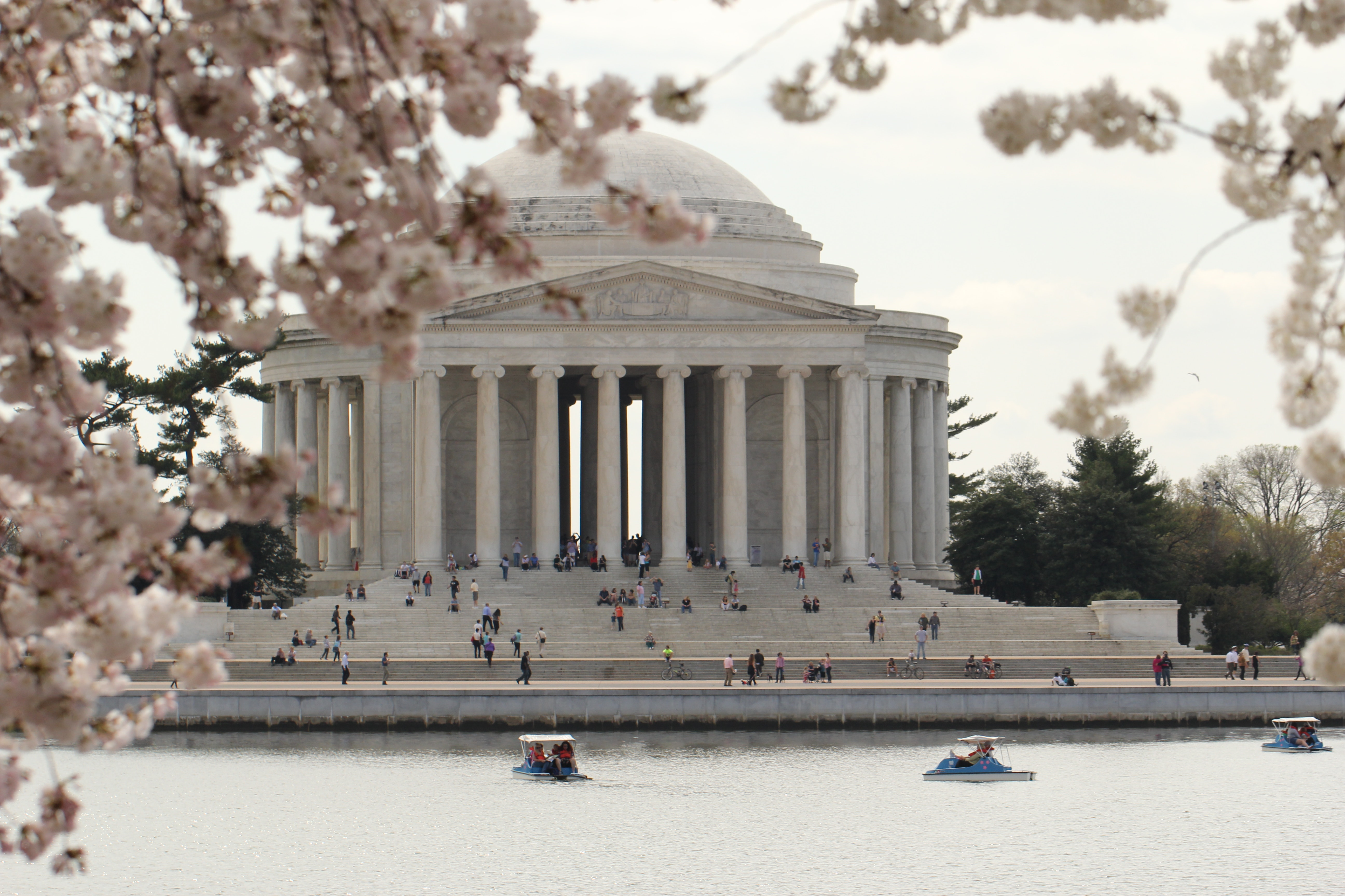 Free stock photo of cherry blossoms, jefferson memorial, monument