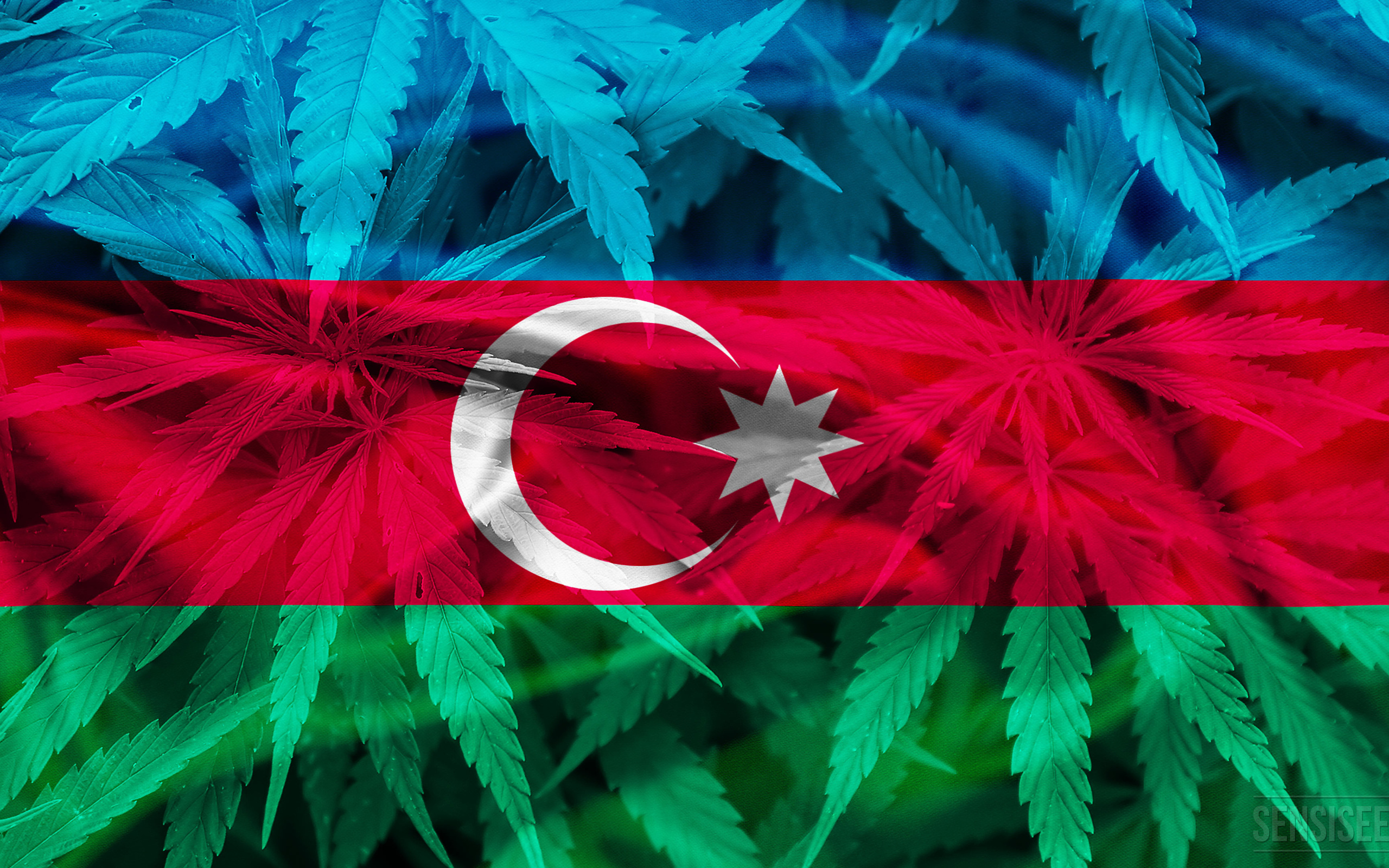 2560x1600 Photos Of Azerbaijan, Cannabis In Azerbaijan, Cannabis ...