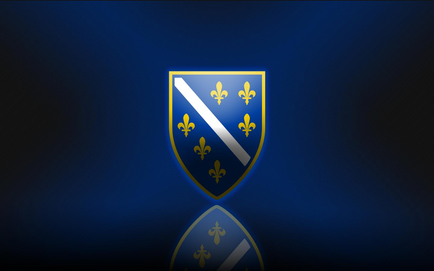 Group of Bosnia Soccer Wallpaper