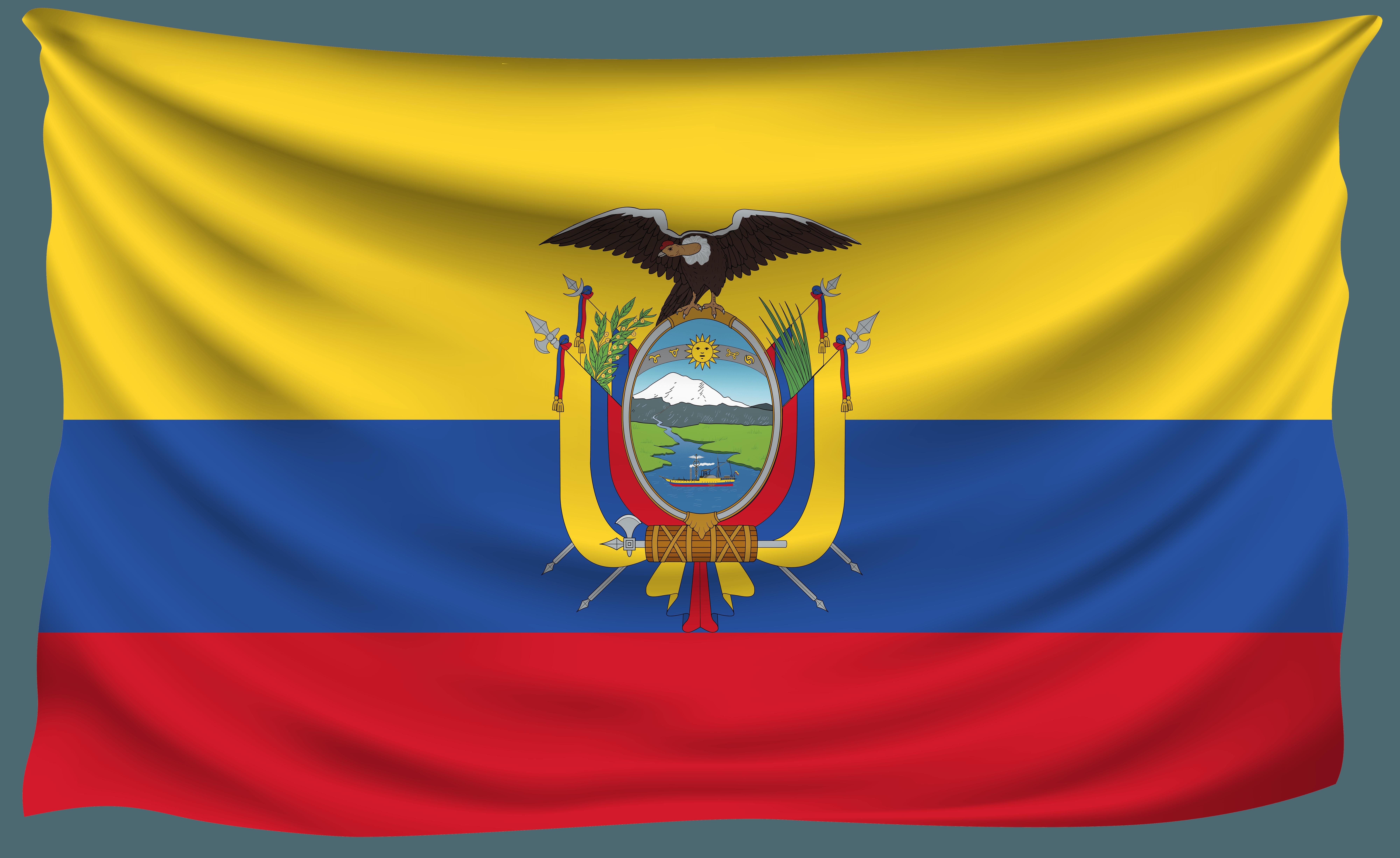 Ecuador National Football Team Background 10