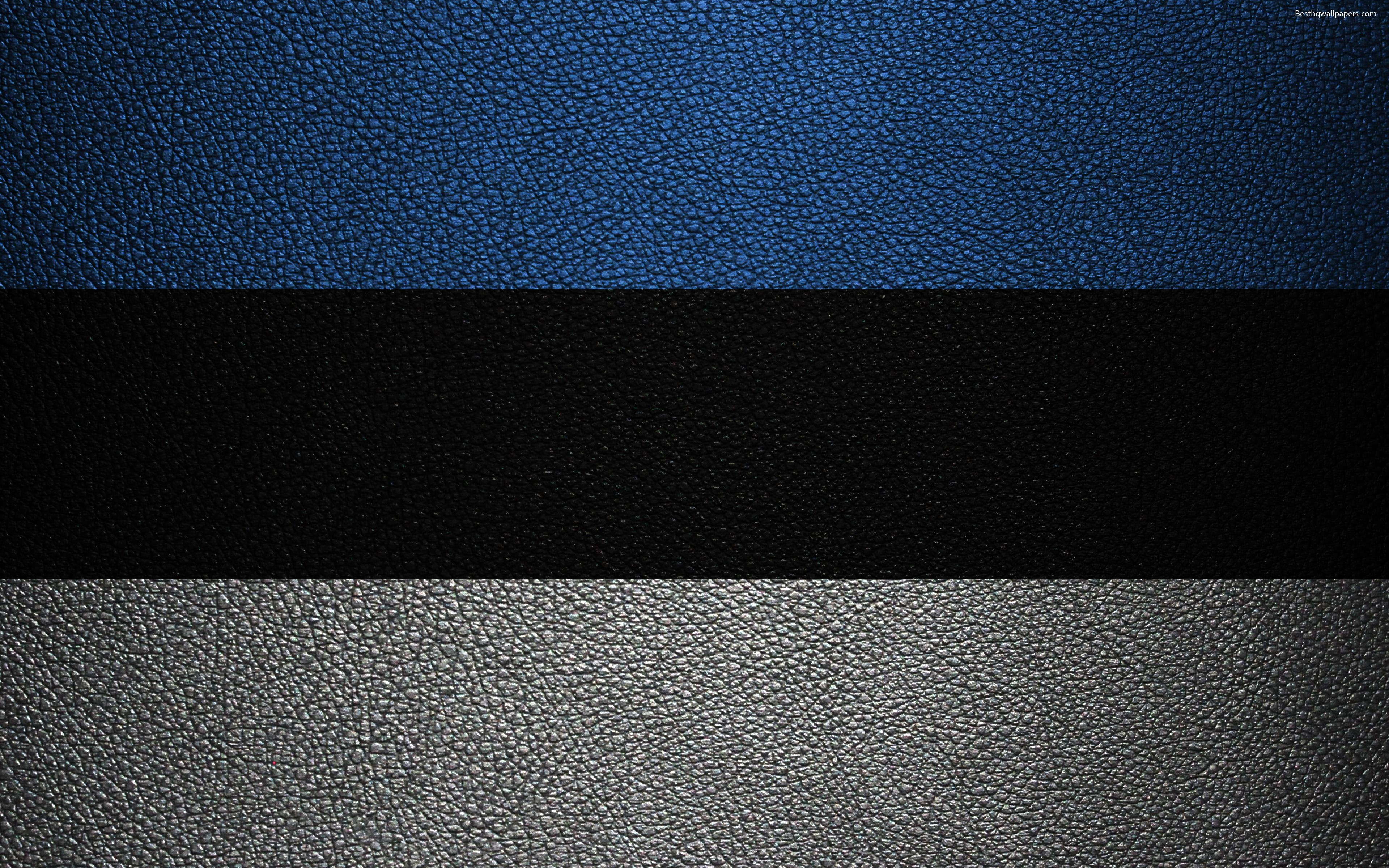 Download wallpapers Flag of Estonia, 4k, leather texture, Estonian