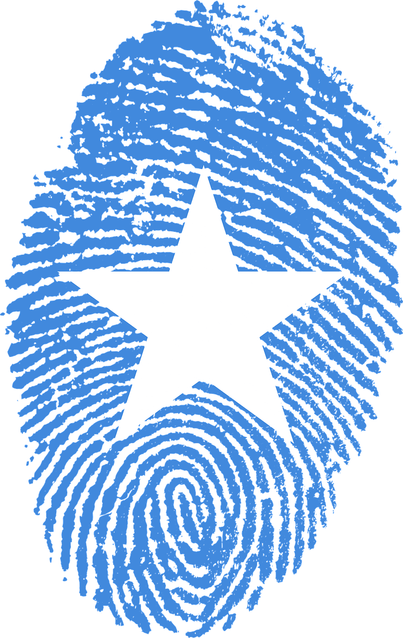 Travel, Somalia Flag Fingerprint Country Pride Ide