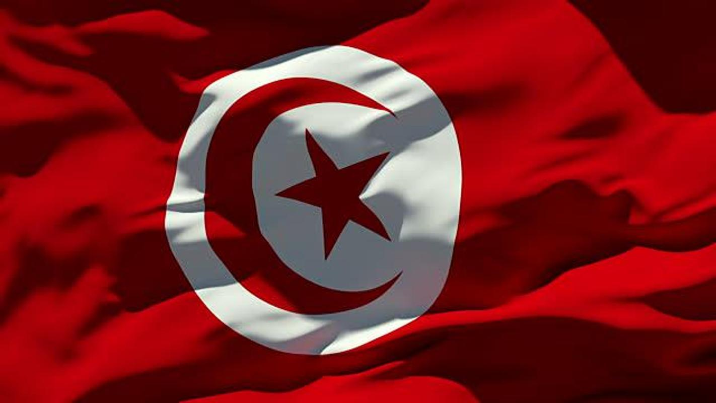 Tunisia Flag Wallpapers for Android