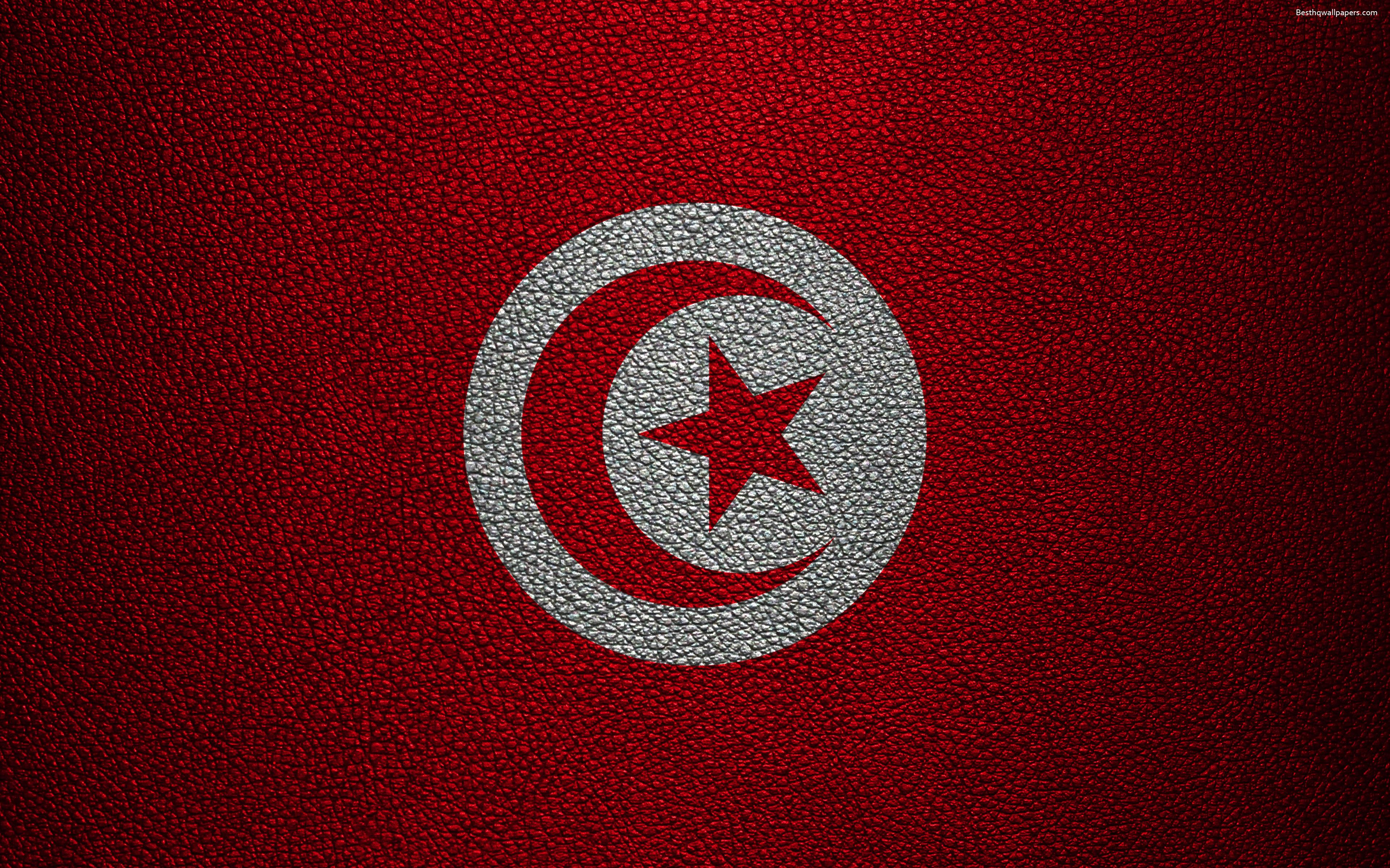 Download wallpapers Flag of Tunisia, Africa, 4k, leather texture