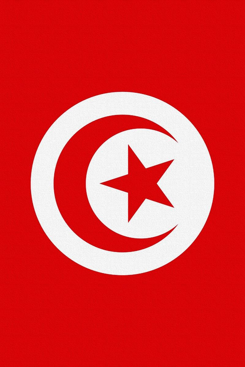 Download wallpapers 800x1200 tunisia, flag, star, symbols iphone 4s/4