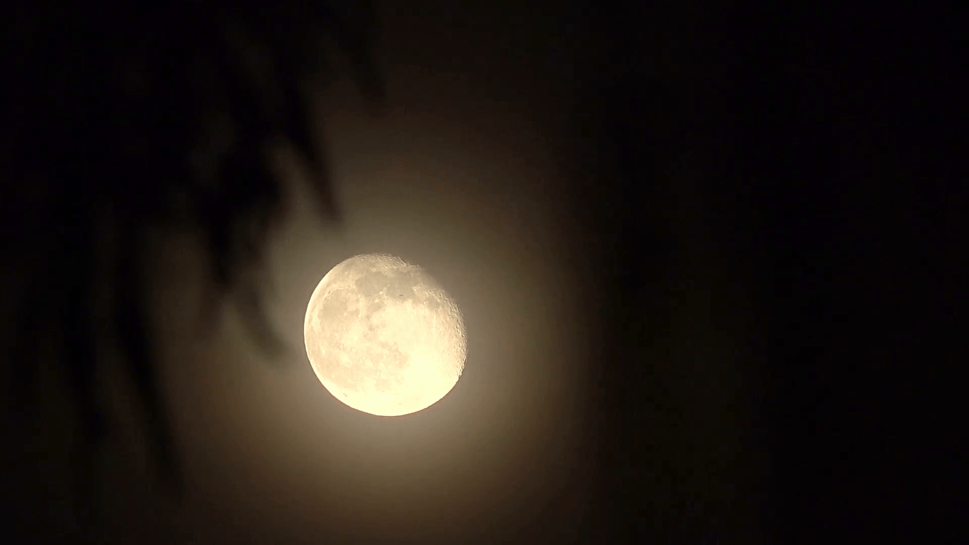 HD tight waning gibbous moon super detail v2 Stock Video Footage ...
