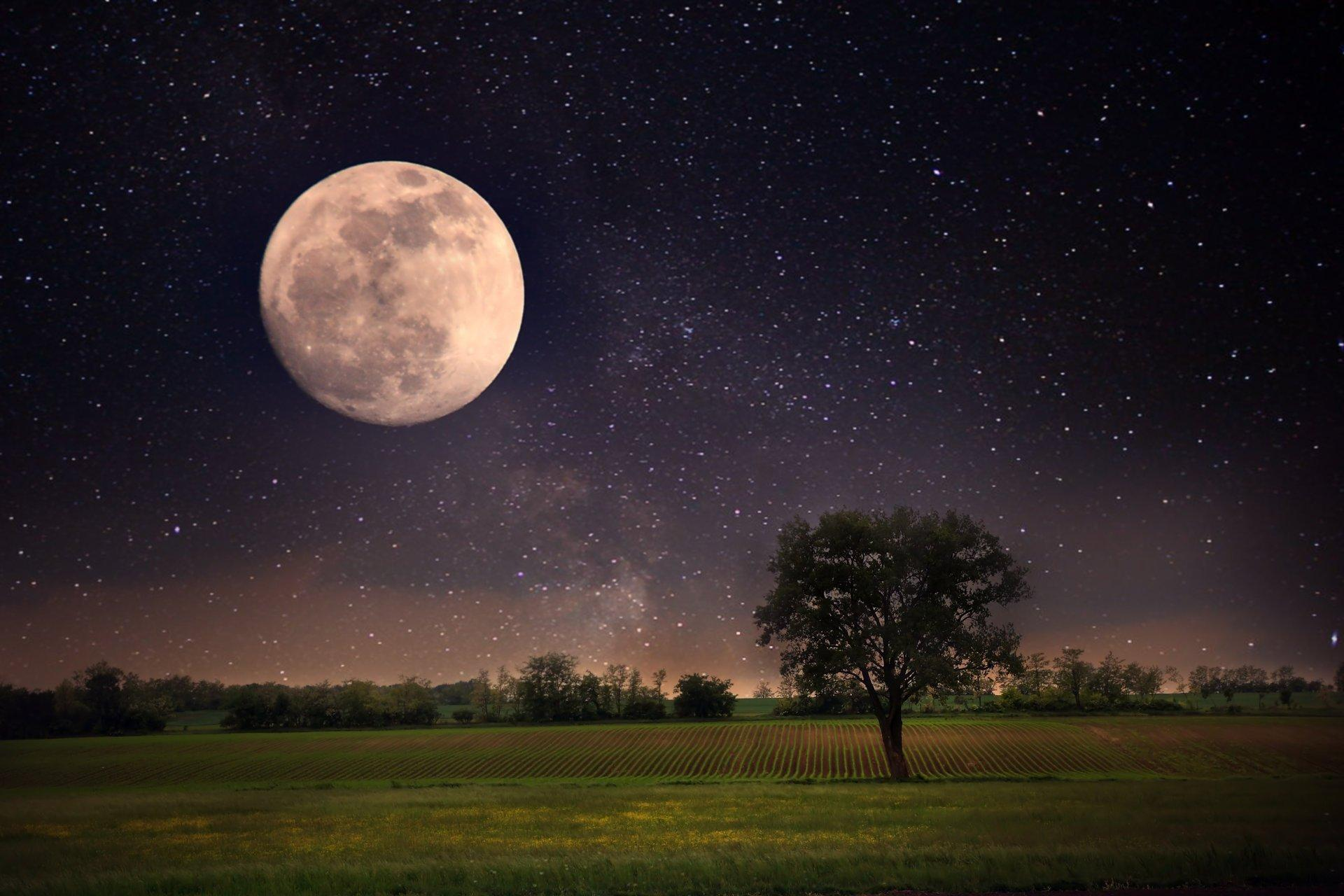 moon night landscape stars full moon sky beautiful scene nature ...