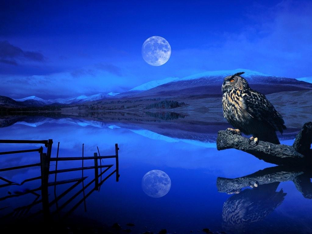 Moon Wallpapers | HD Wallpapers Pulse