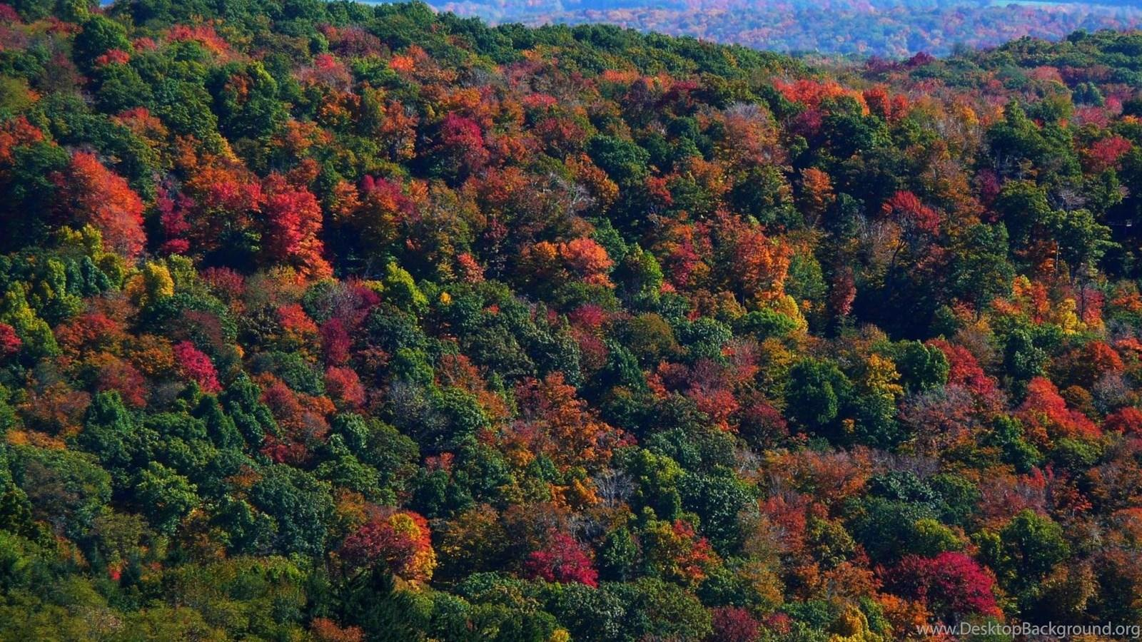 MLeWallpapers.com Appalachian Mountains In Fall Desktop Background