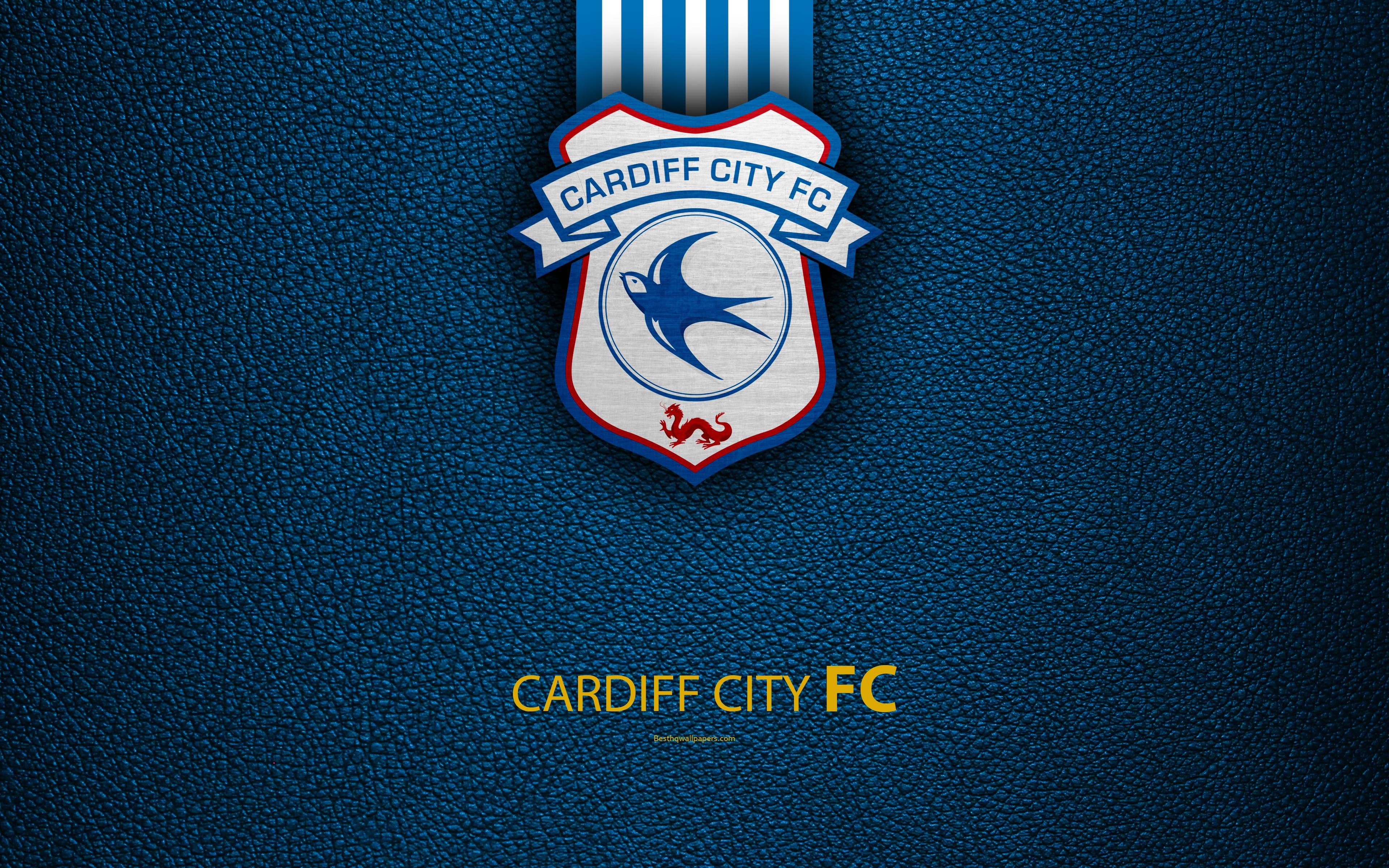 Download wallpapers Cardiff City FC, 4K, English football club, logo ...