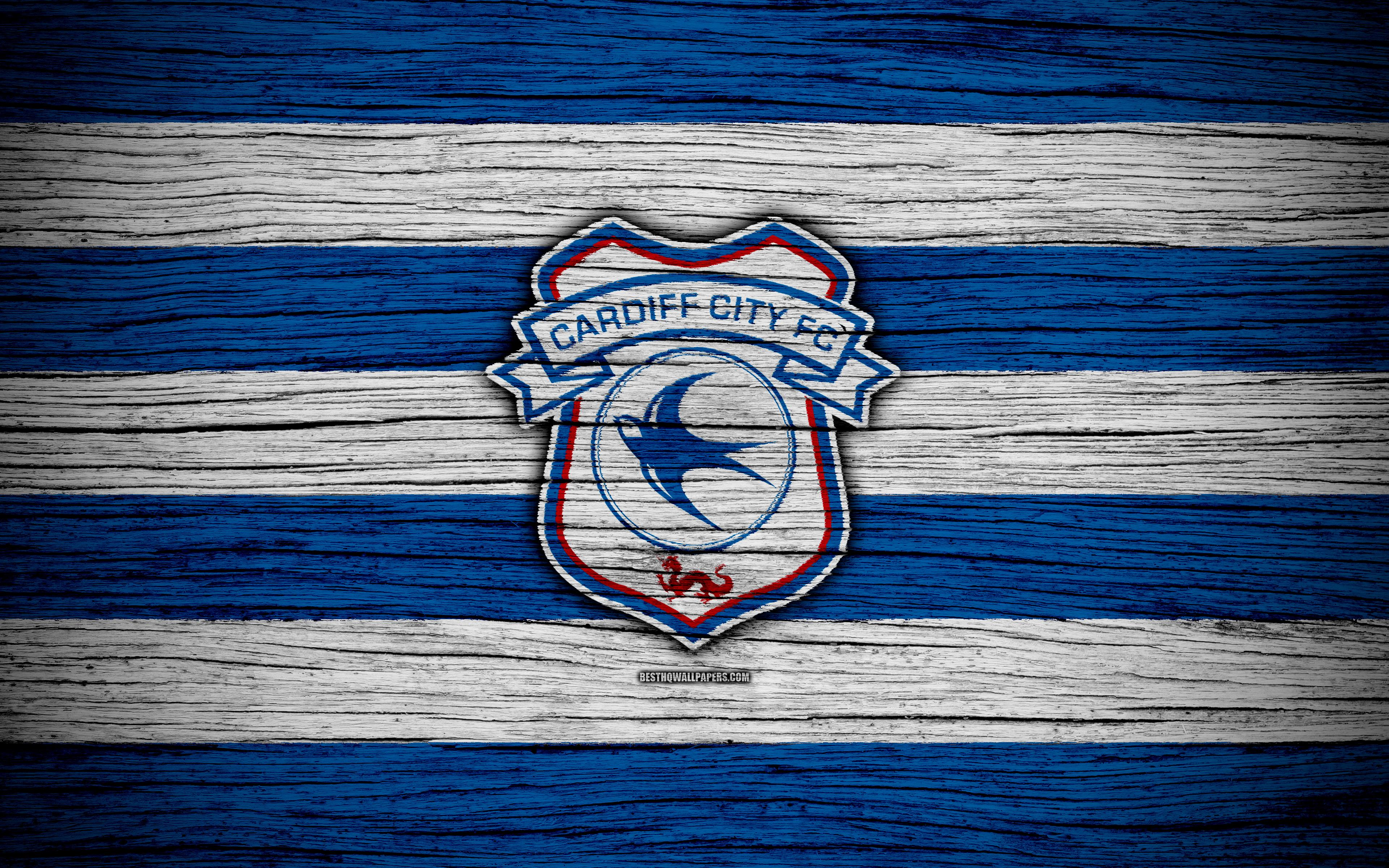 Download wallpapers Cardiff City FC, 4k, EFL Championship, soccer ...