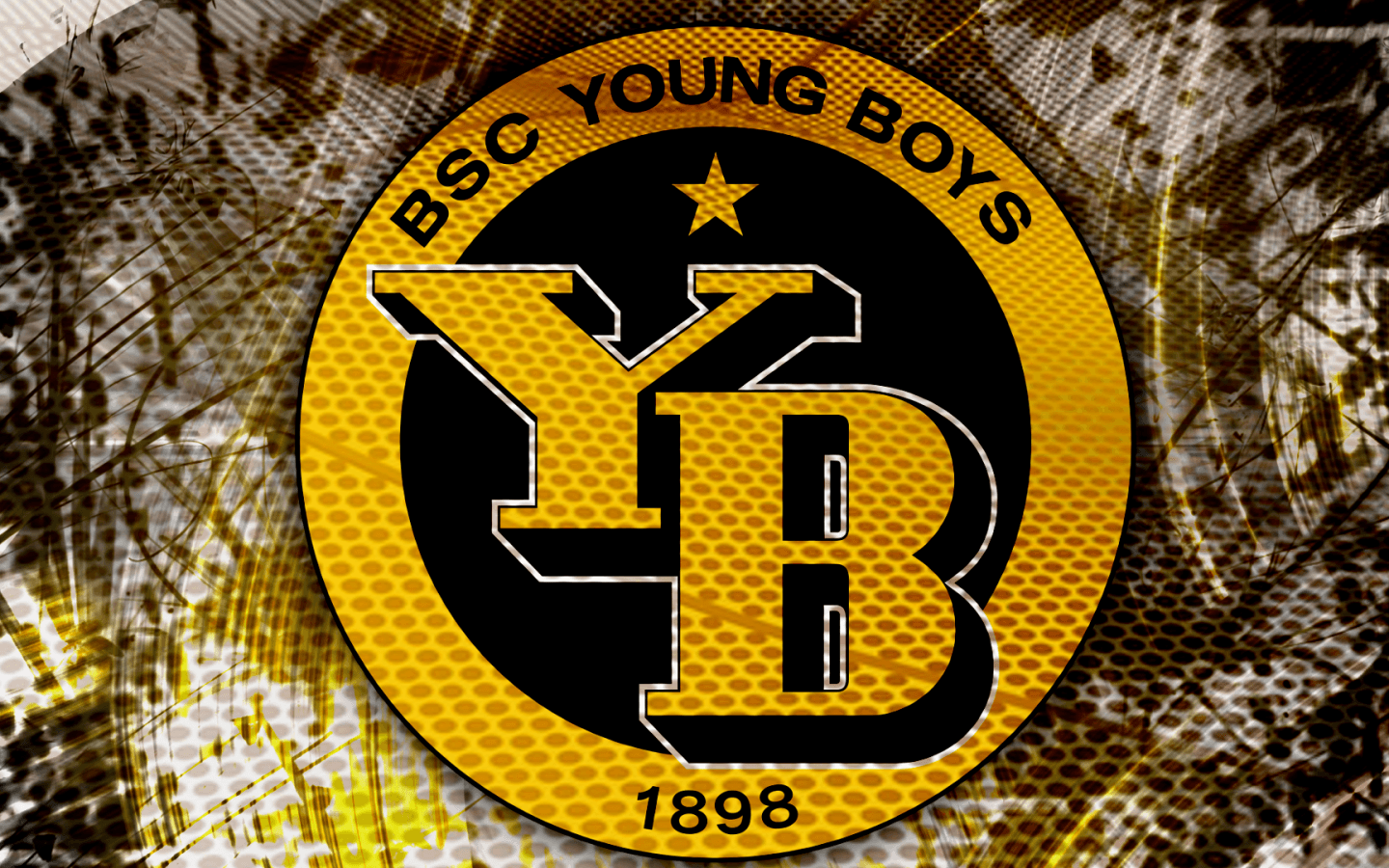 BSC Young Boys Teams Background