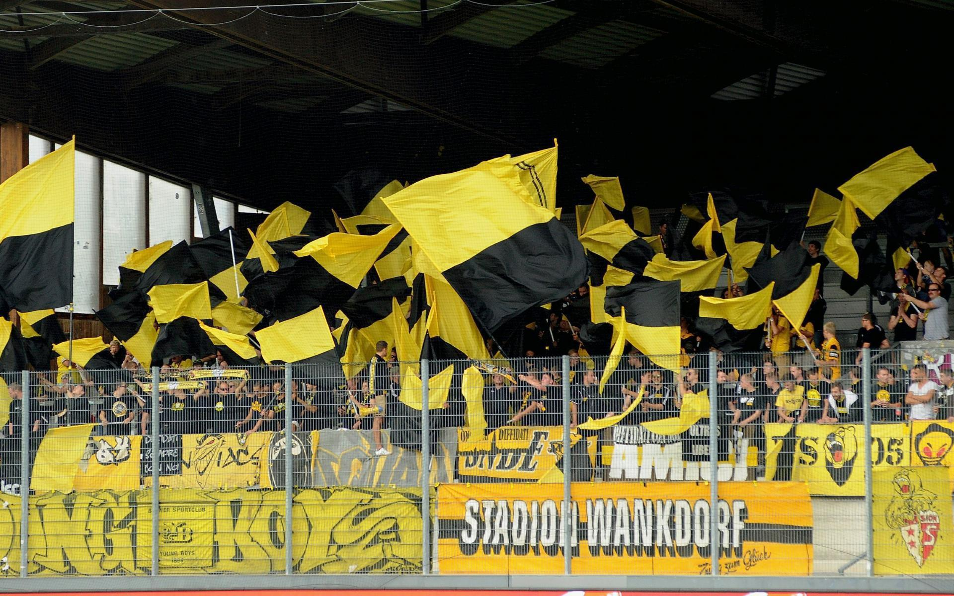 BSC Young Boys Background 8