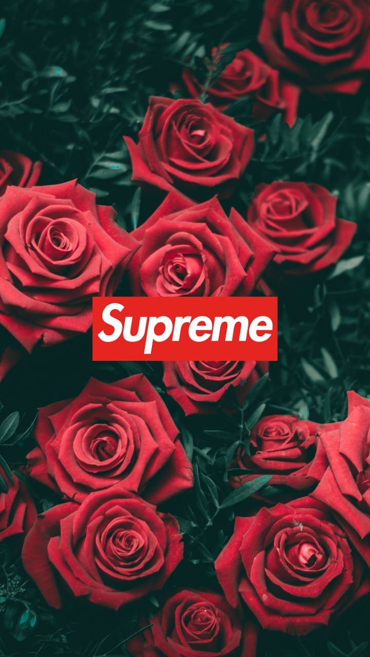 Supreme Floral Wallpapers Wallpaper Cave