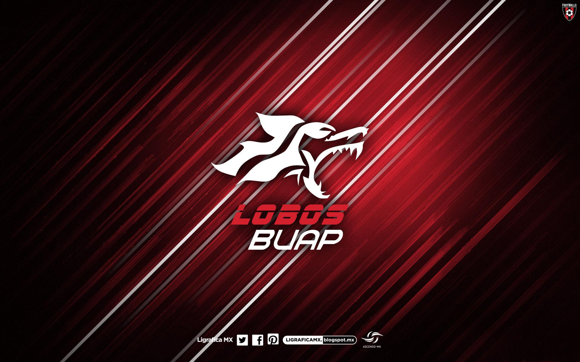 Lobos B U A P Wallpapers
