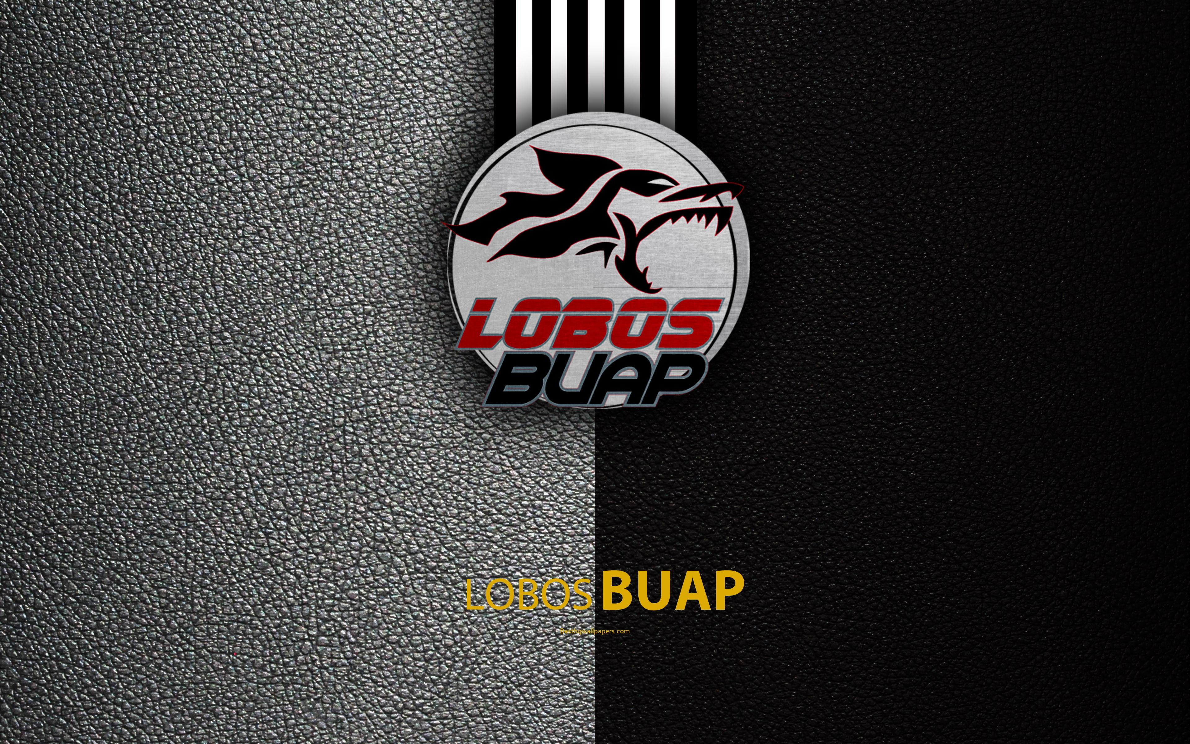 Download wallpapers Lobos BUAP, 4k, leather texture, logo, Mexican