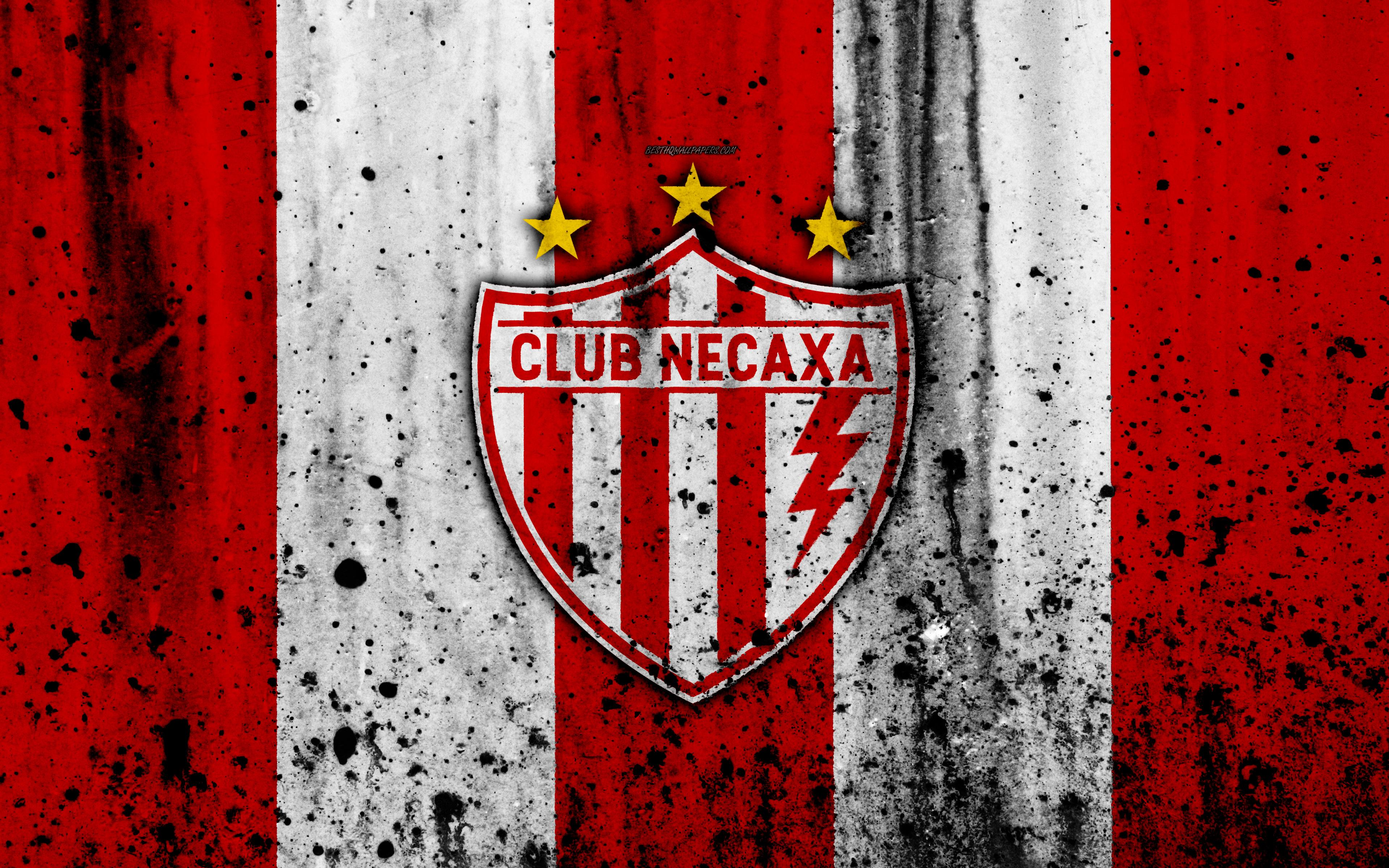 Download wallpapers 4k, FC Necaxa, grunge, Liga MX, soccer, art