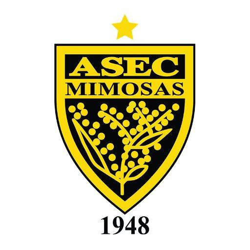 ASEC Mimosas wallpaper