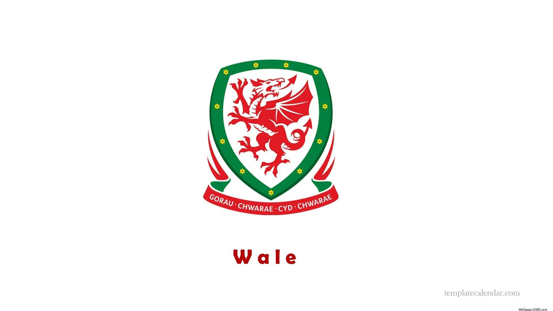 Wales National Football Team Zoom Backgrounds 5
