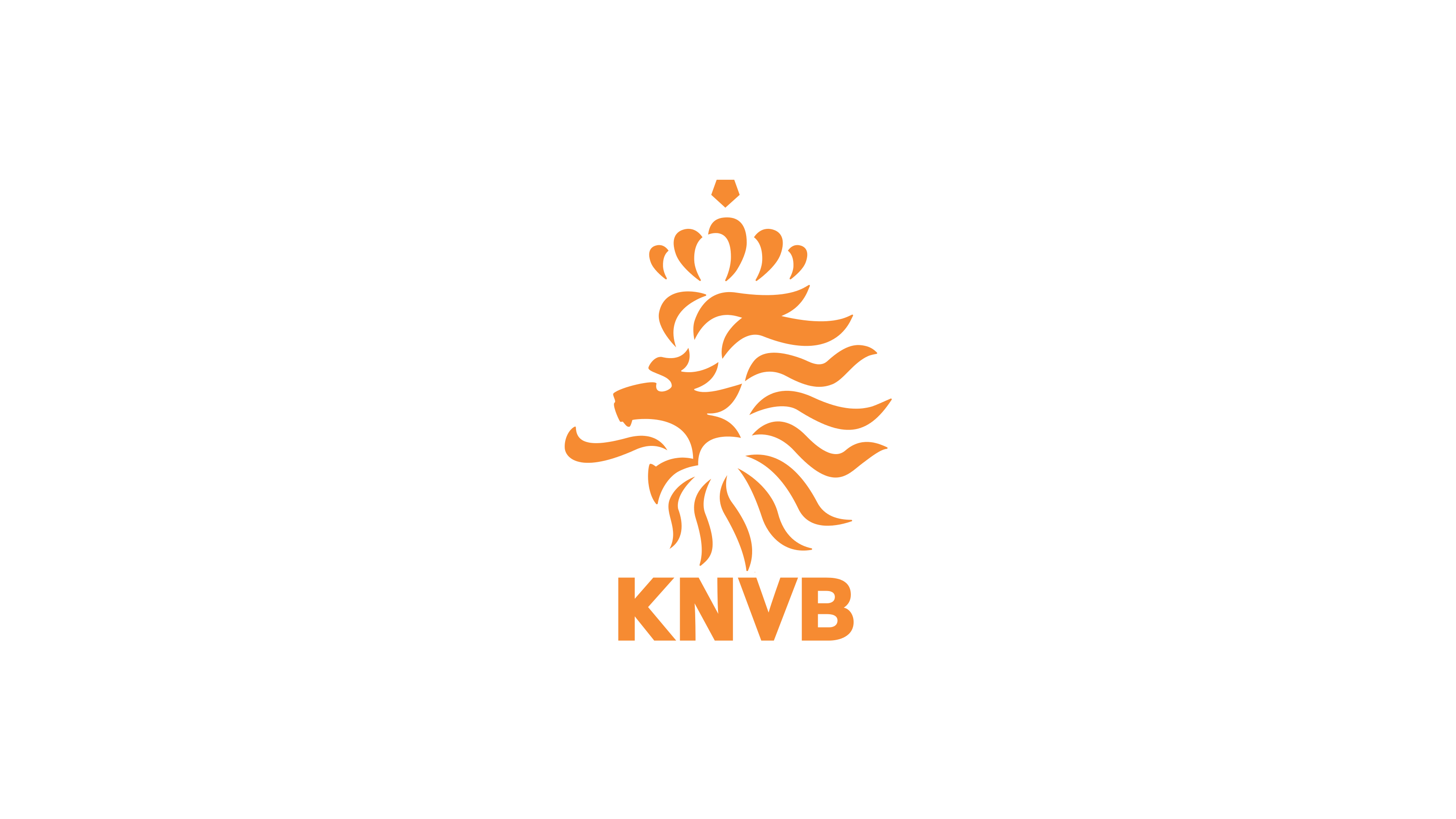 Netherlands National Football Team Zoom Background 5