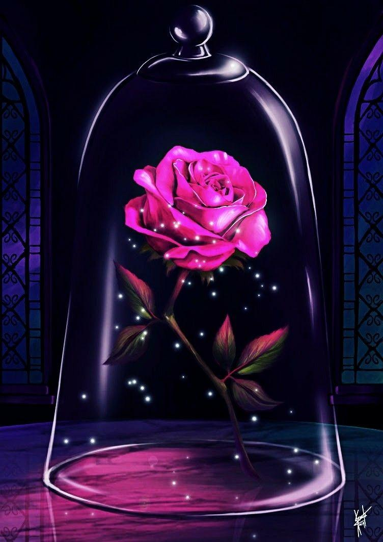 Beauty And The Beast Rose Wallpapers Wallpaper Cave