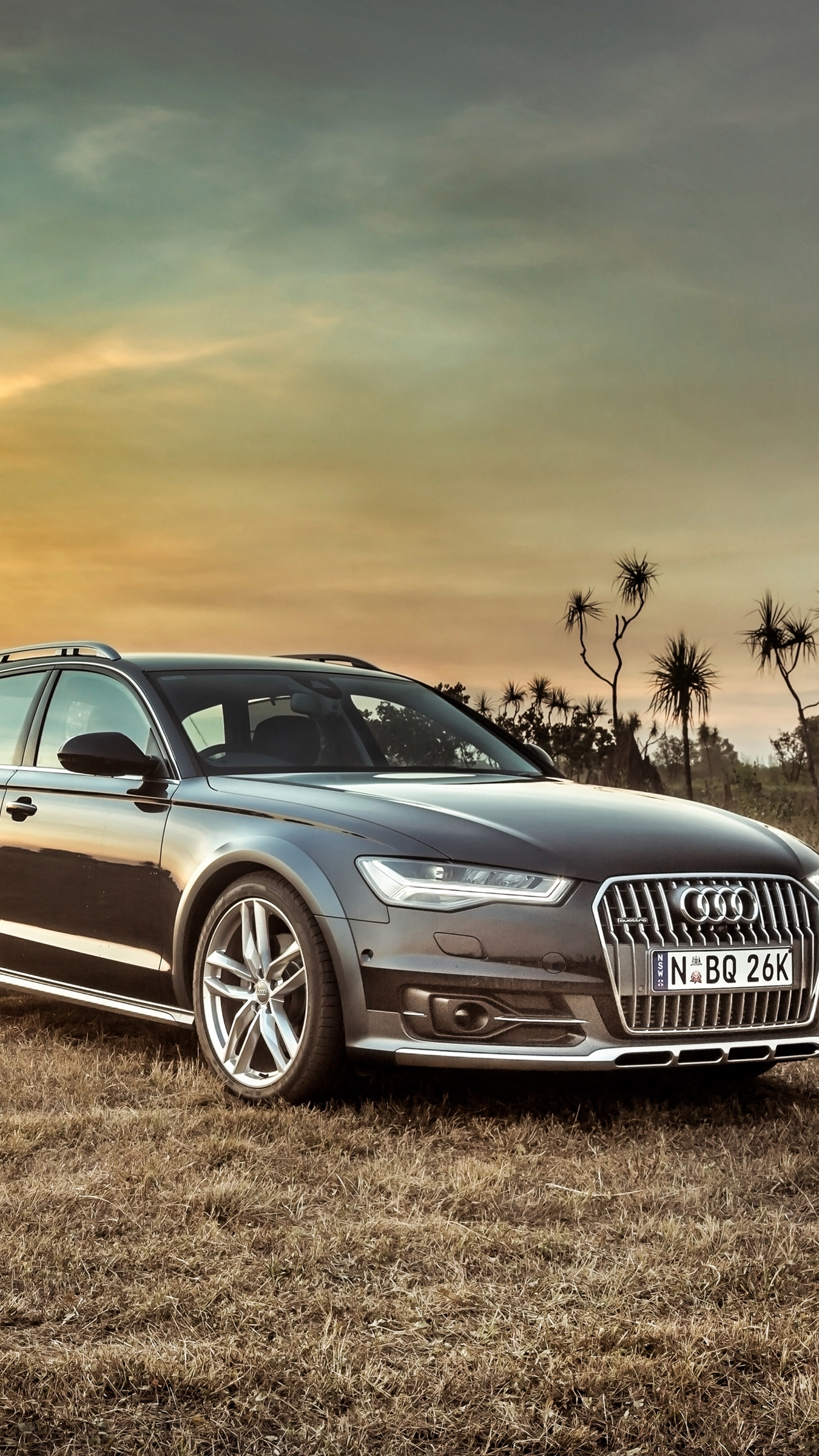 Download wallpaper 1350x2400 audi, a6, allroad, side view, hdr ...