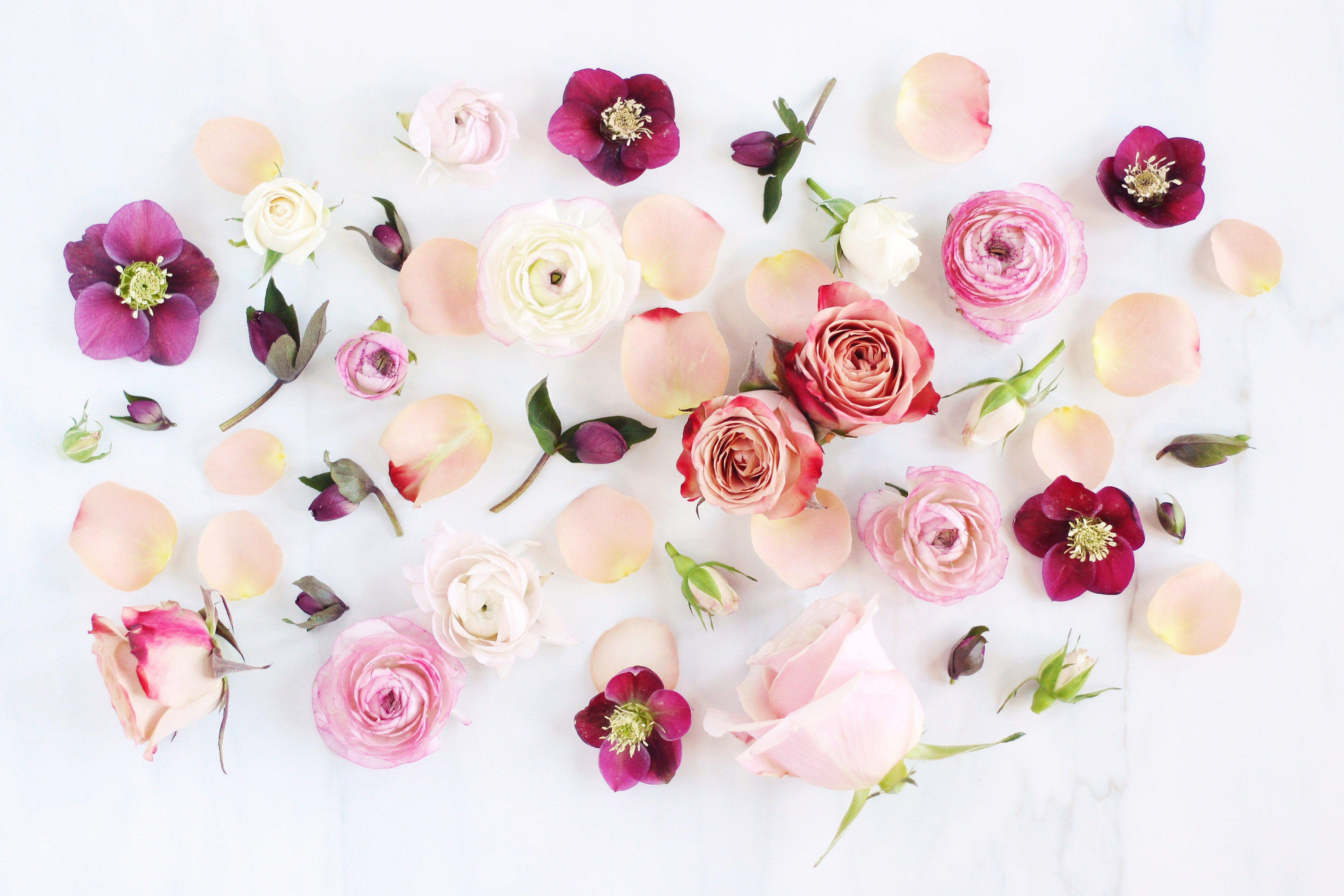 Aesthetic Floral Desktop Wallpapers Wallpaper Cave