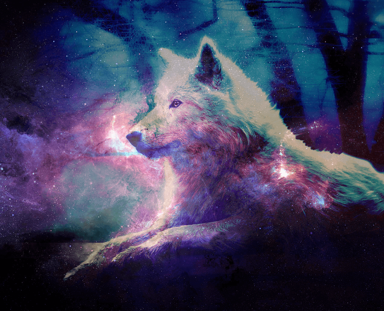Black Wolf Galaxy Wallpapers Wallpaper Cave