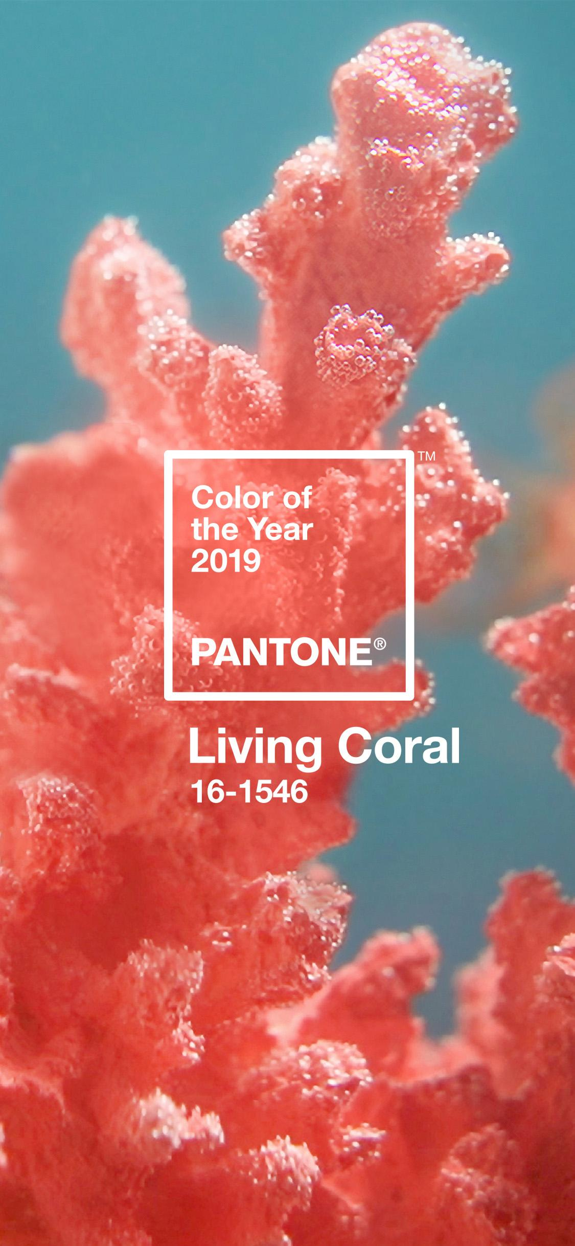 Graphics - Pantone Digital Wallpaper