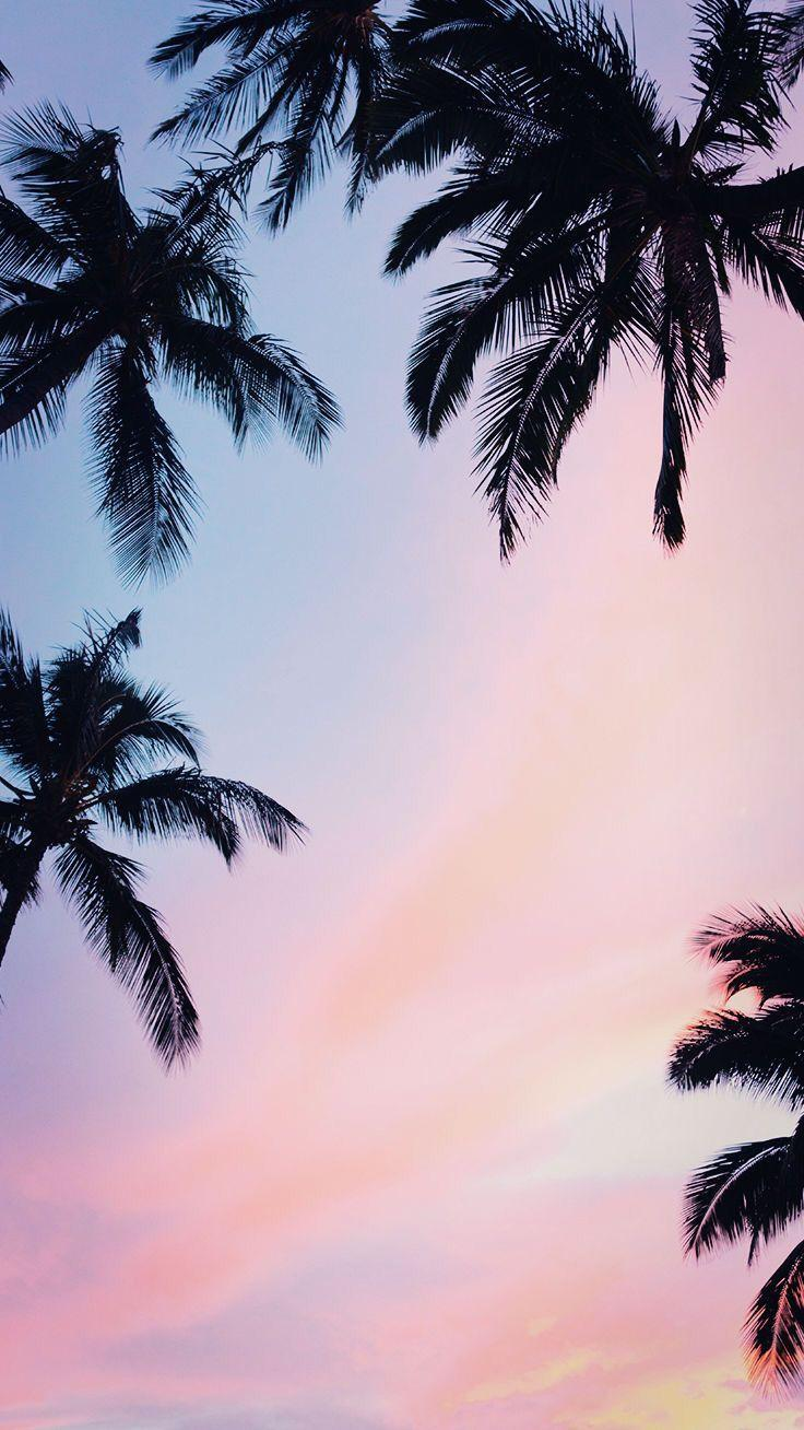 iPhone wallpaper | Summer in 2019 | Sunset iphone wallpaper, Pretty ...
