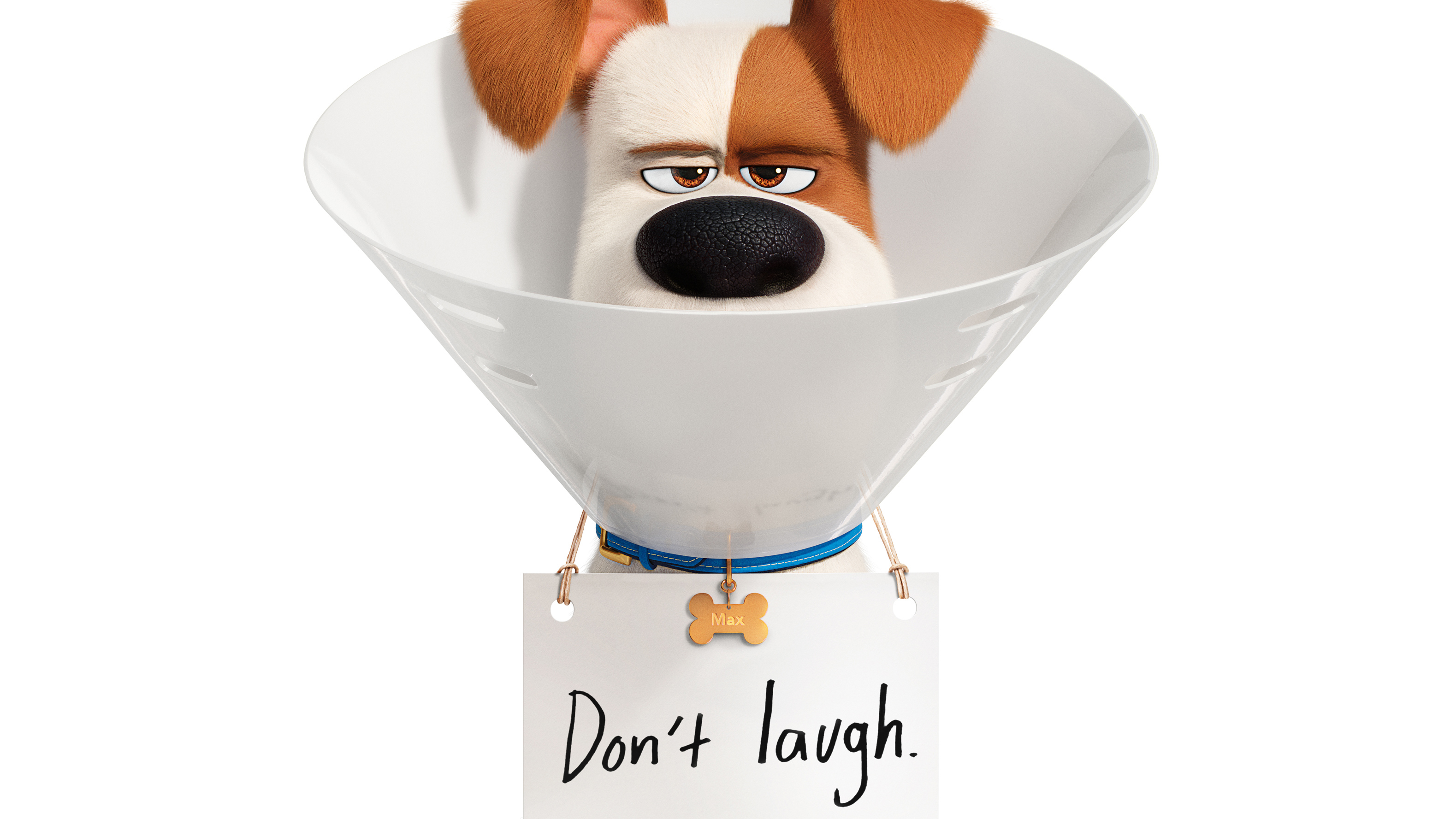 The Secret Life Of Pets 2 Wallpapers Wallpaper Cave