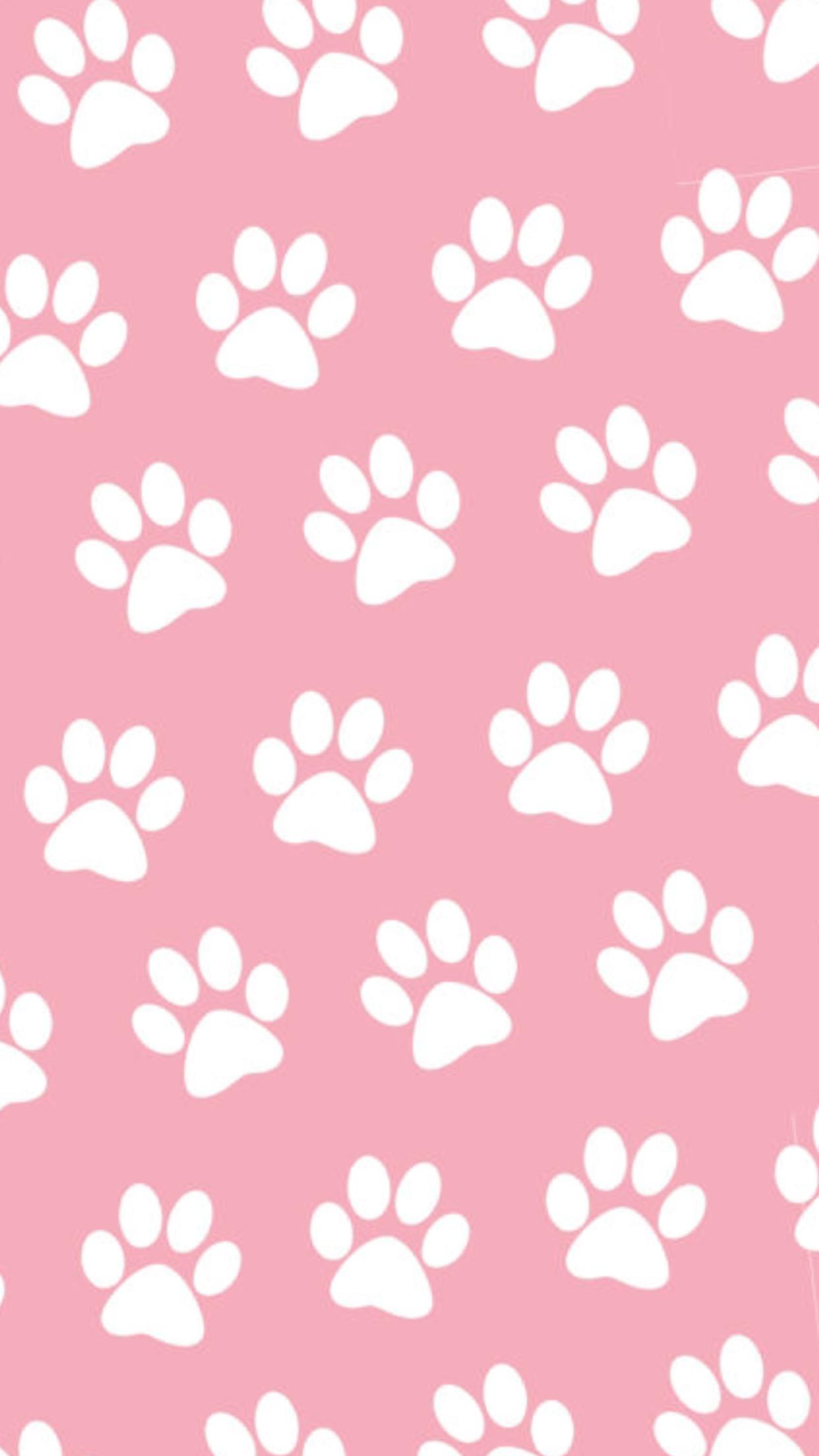 Paw Wallpapers Wallpaper Cave