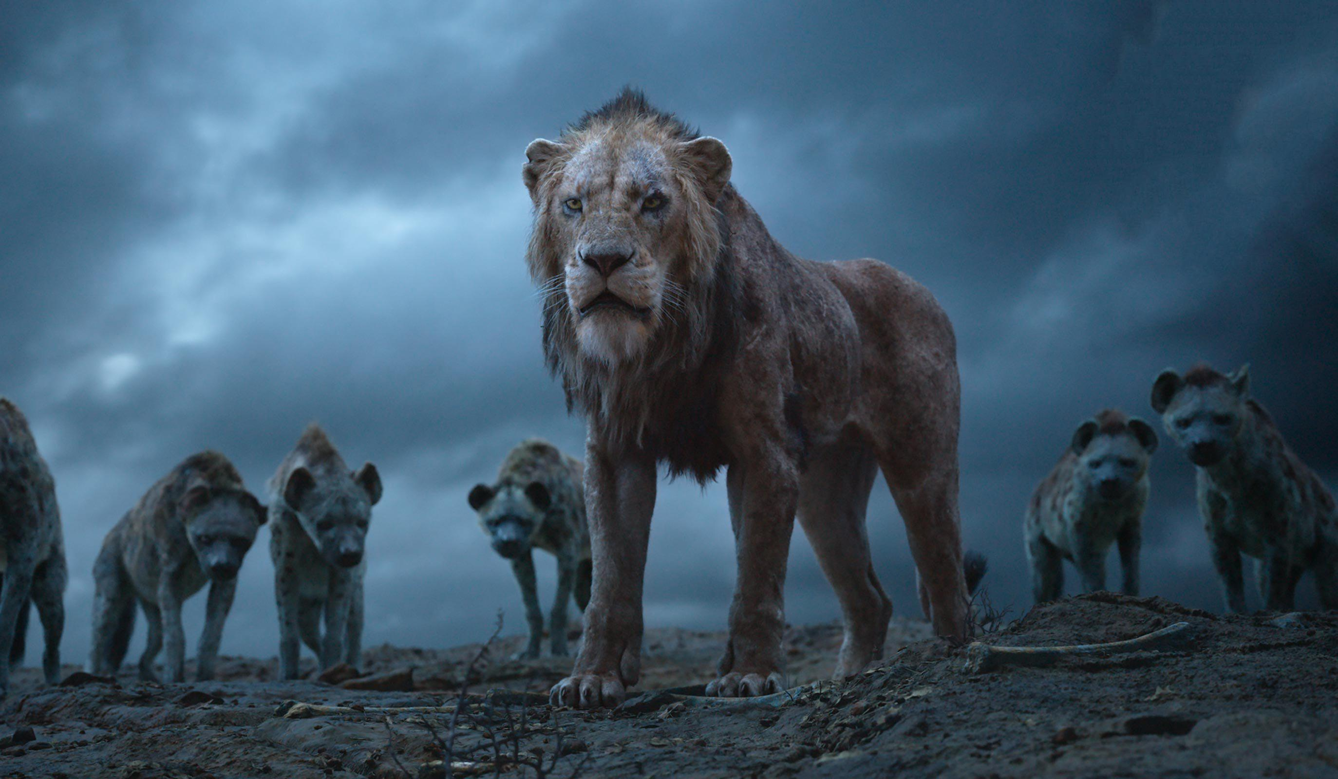 Scar The Lion King 2019, HD Movies, 4k Wallpapers, Image
