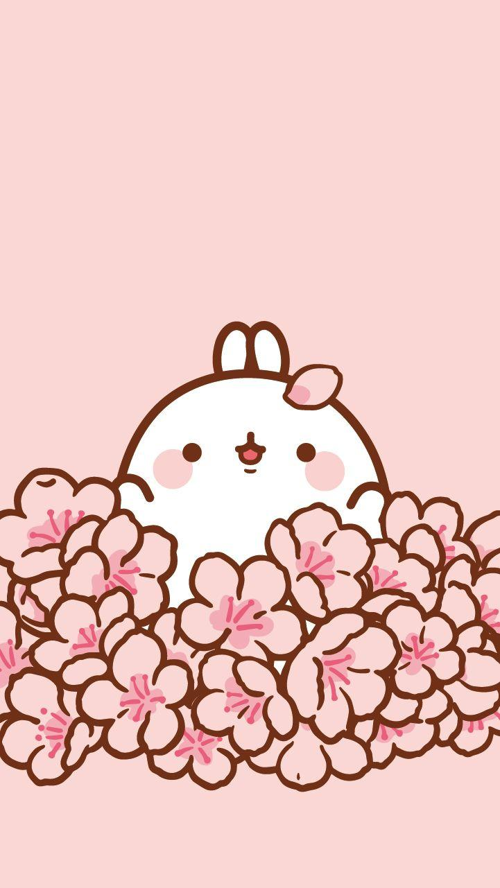 Cute Molang Wallpapers Wallpaper Cave