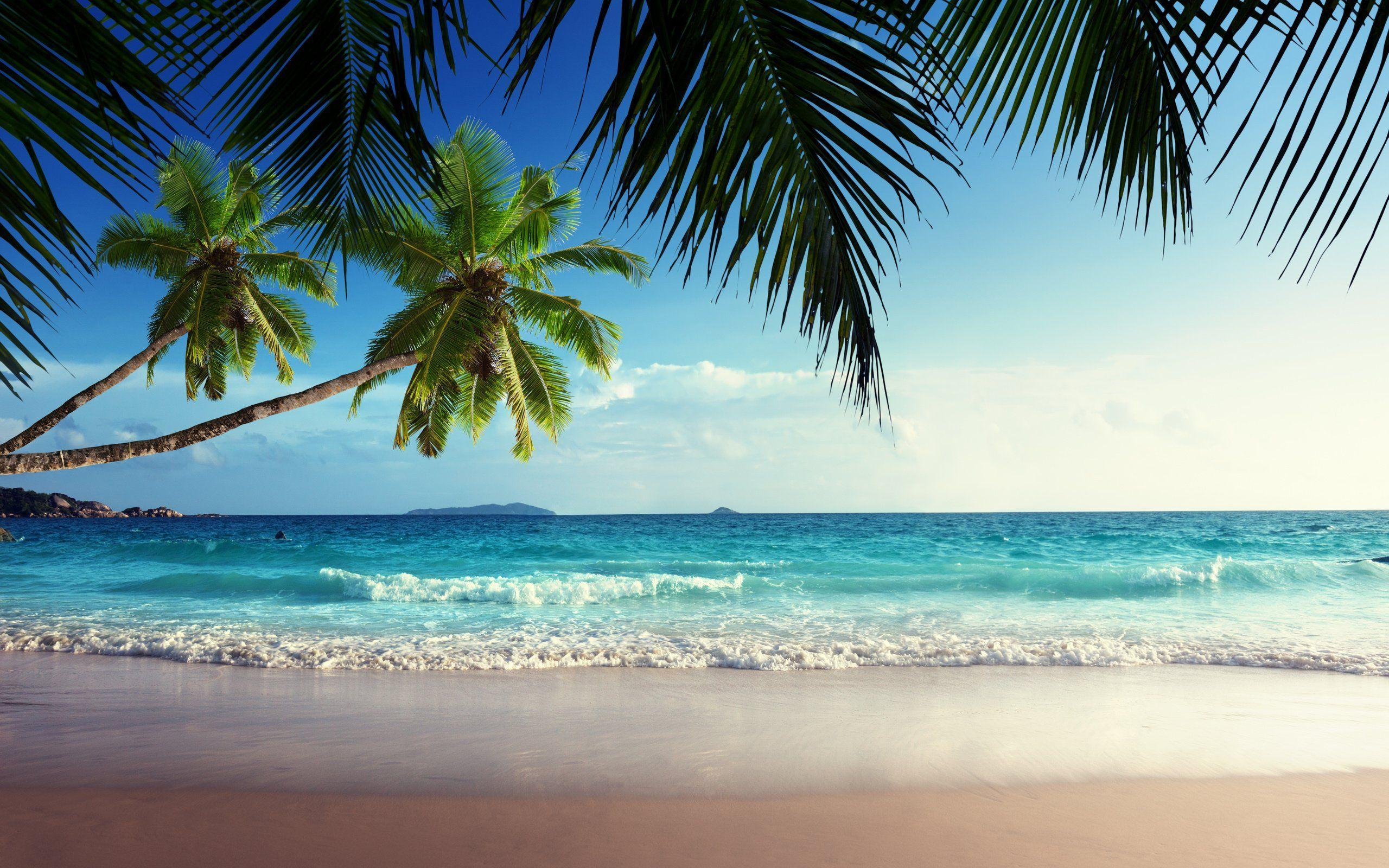 Tropical Beach Paradise Wallpapers Wallpaper Cave